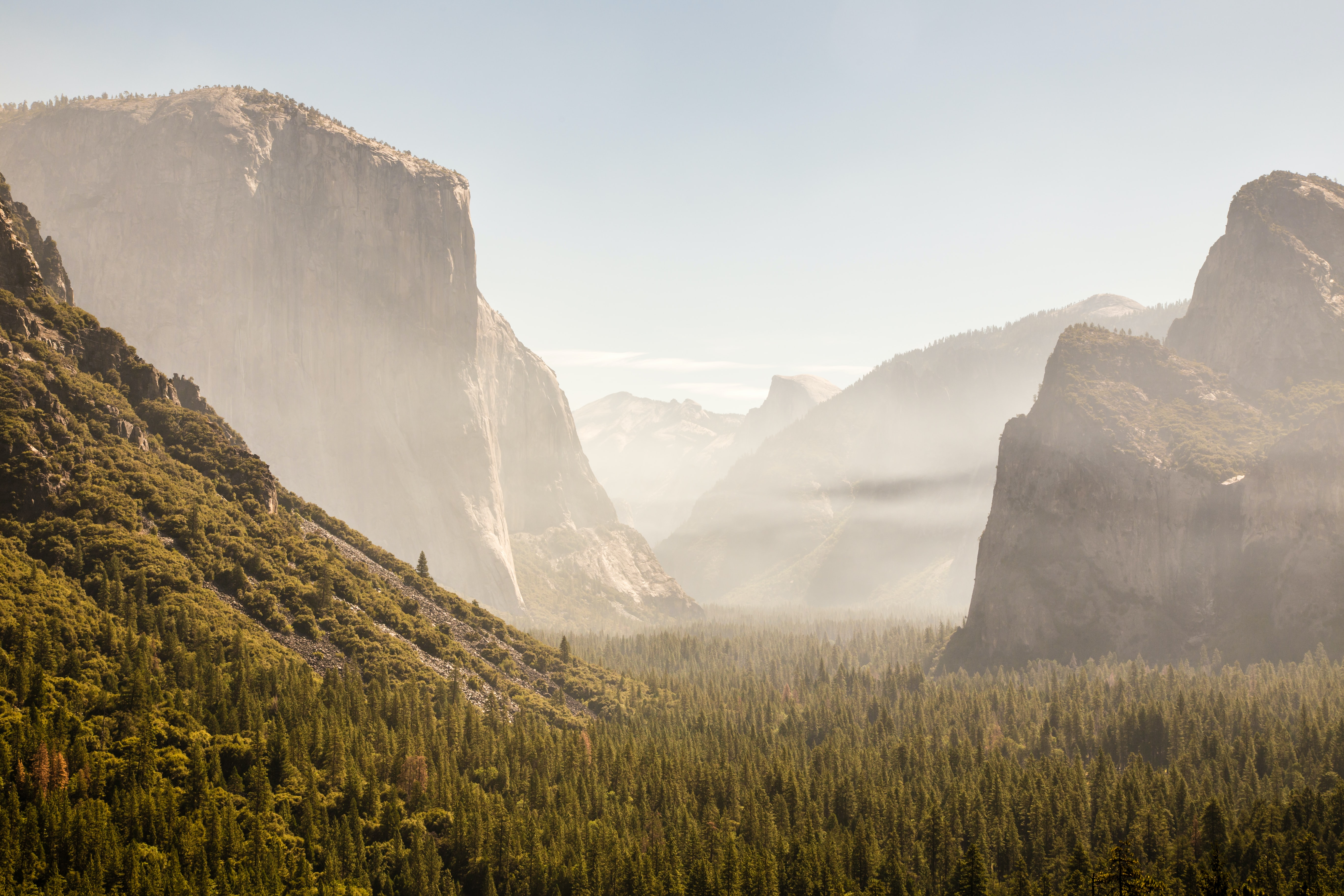 Wooded slopes and granite summits seen from the bottom of Yosemite Valley