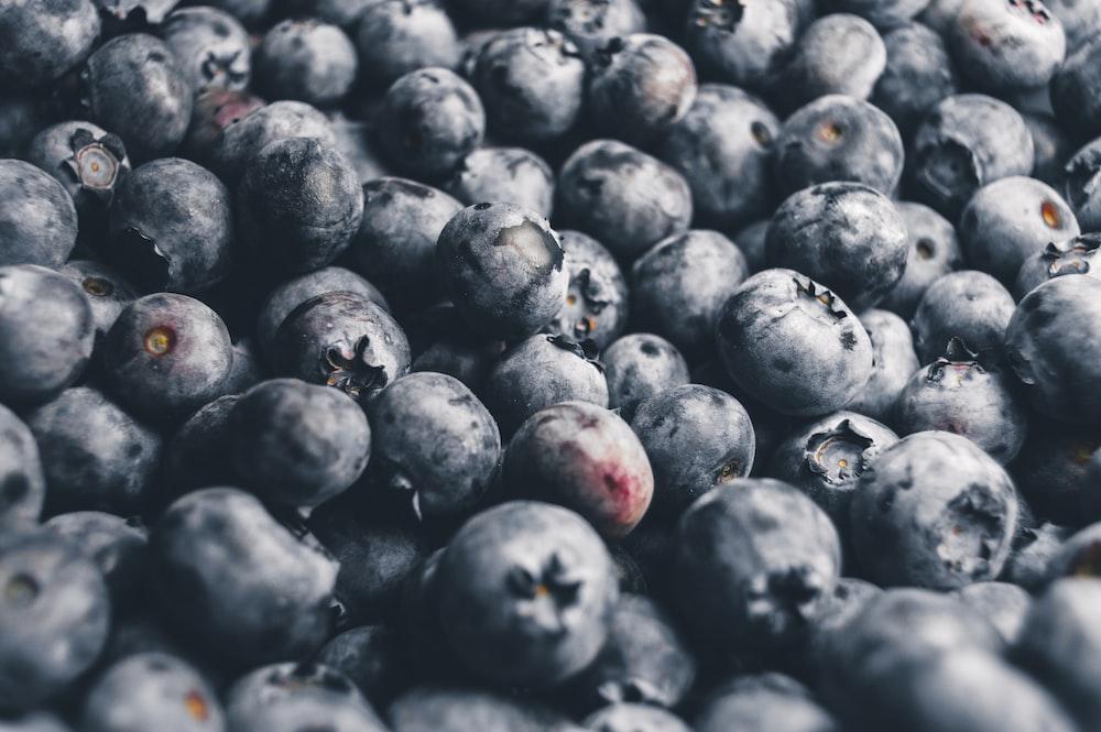 blackberries bundle