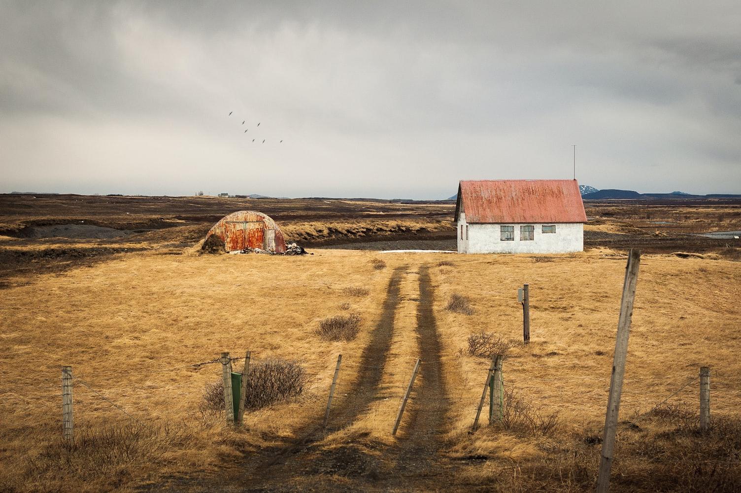 冰島的農場