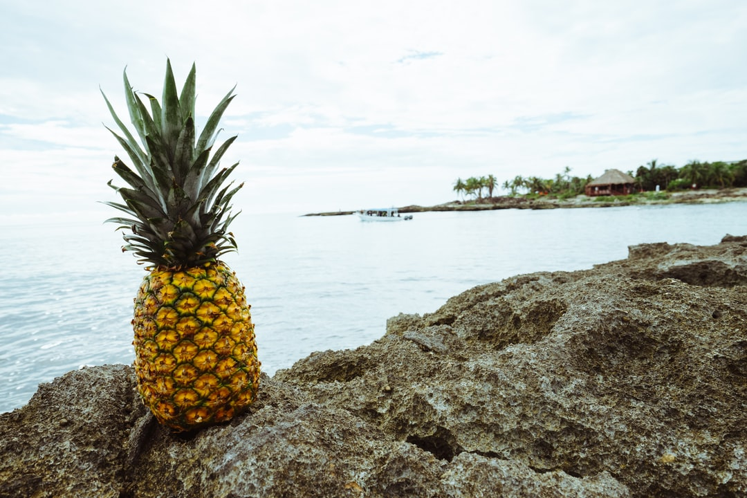 pineapple picture shot in mexico on the rocks