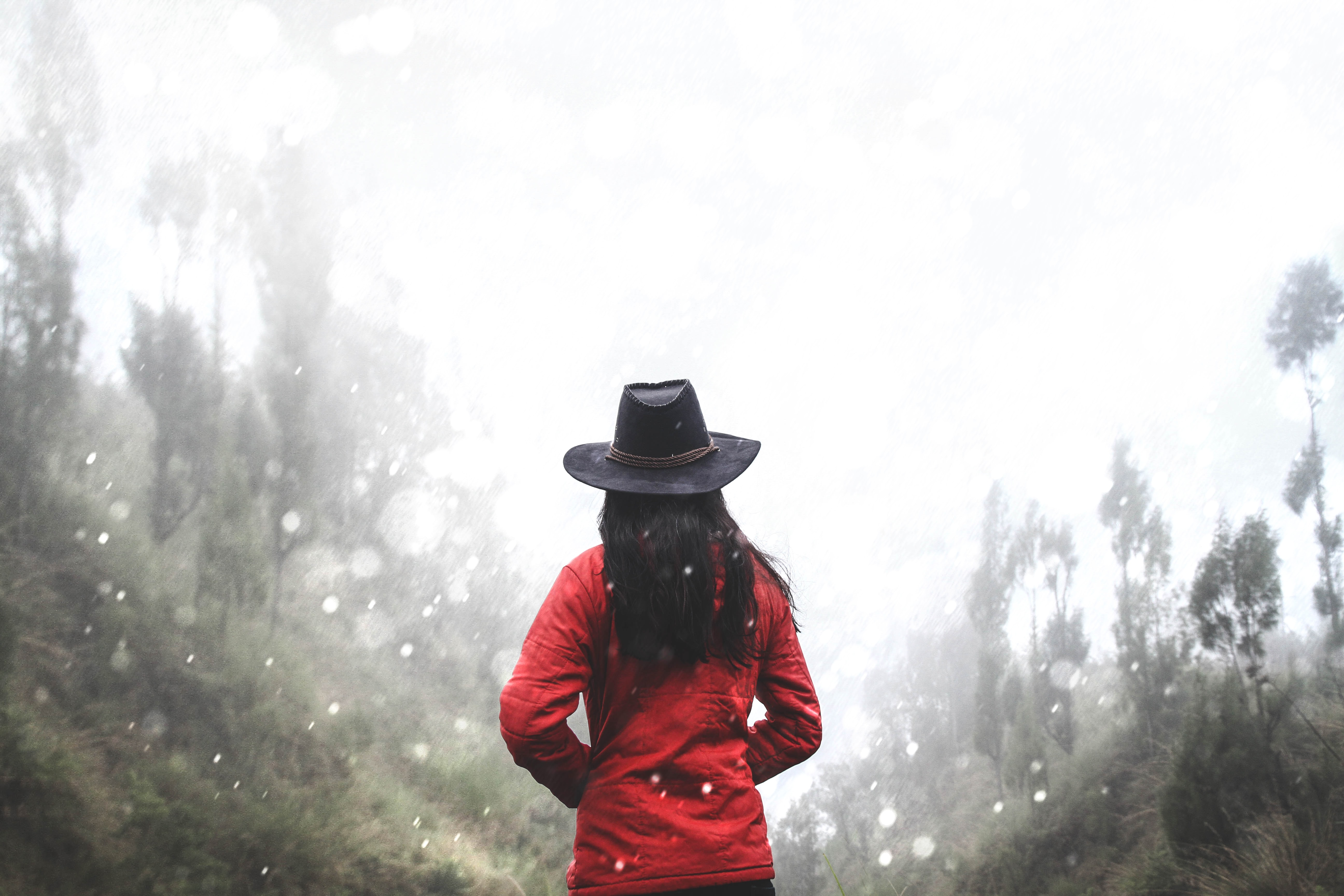 A lady with a red sweater and a black brimmed hat staring into the winter forest in Kintamani, Bali