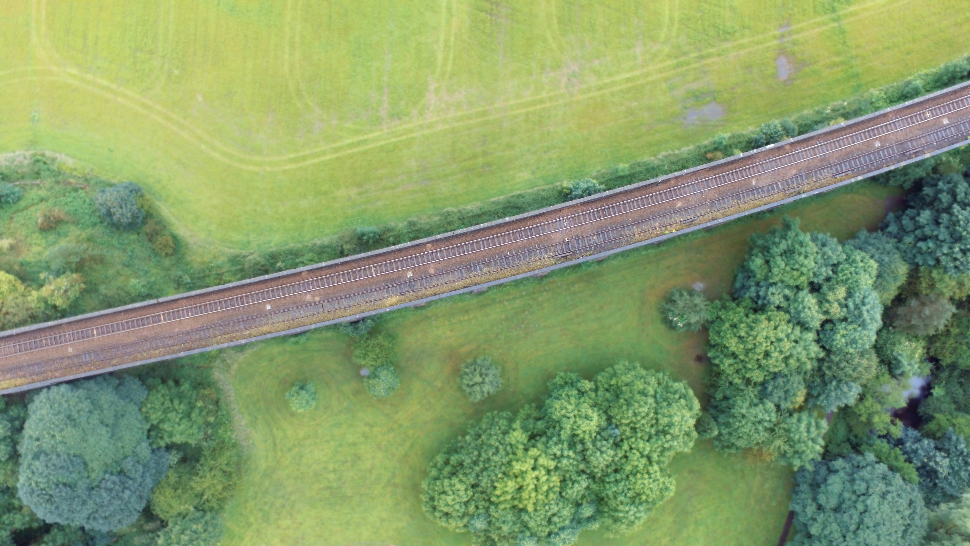 birds eye view of a train rail and trees