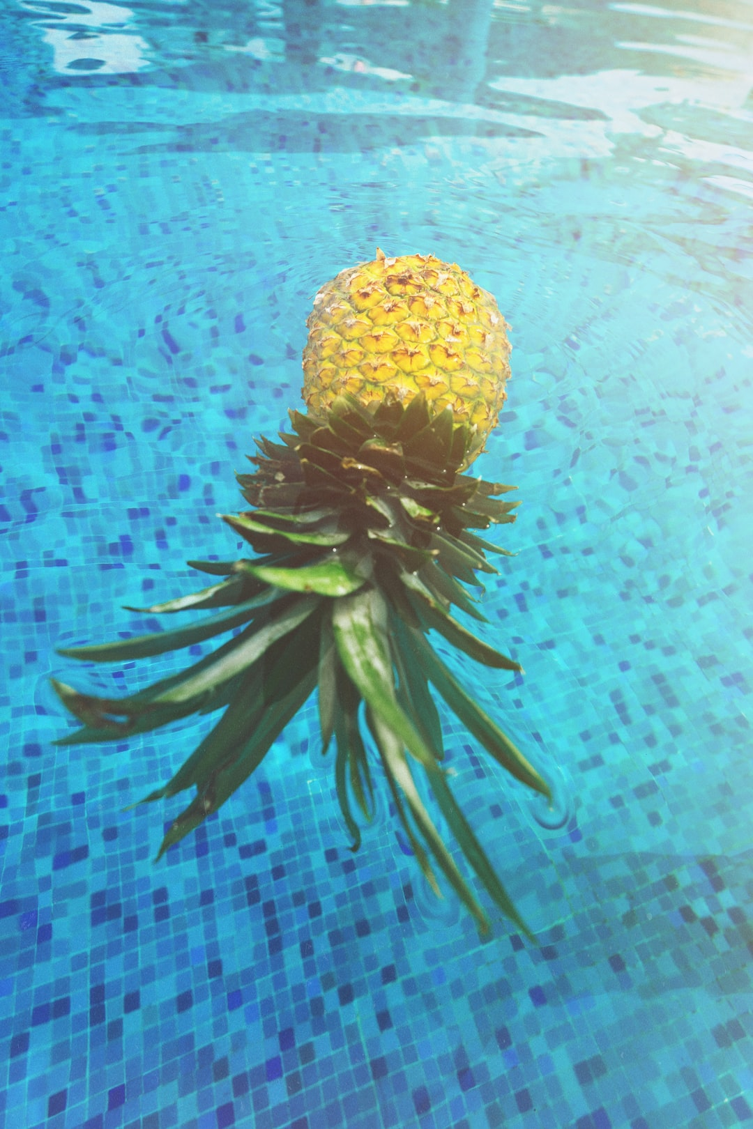 pineapple picture floating in pool in mexico