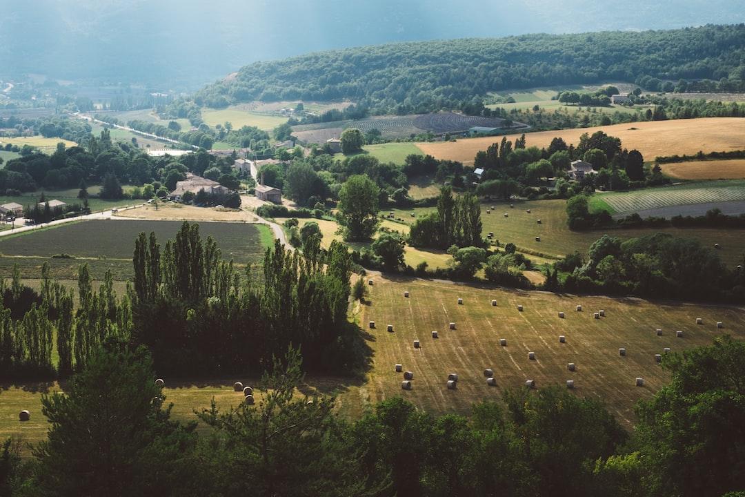 Serene countryside