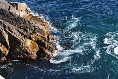 The ocean free stories