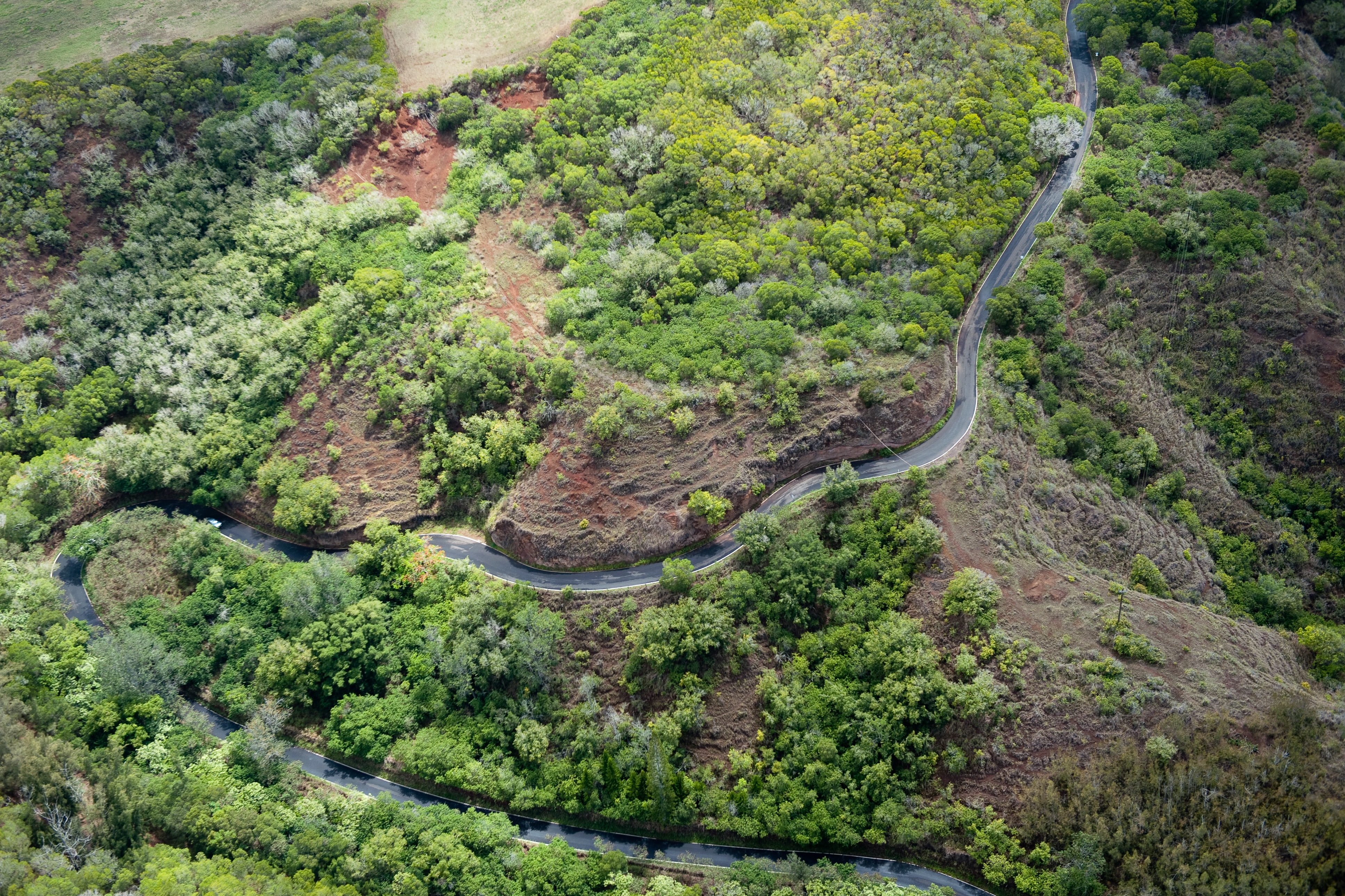 A drone shot of a winding road along a wooded red rock slope