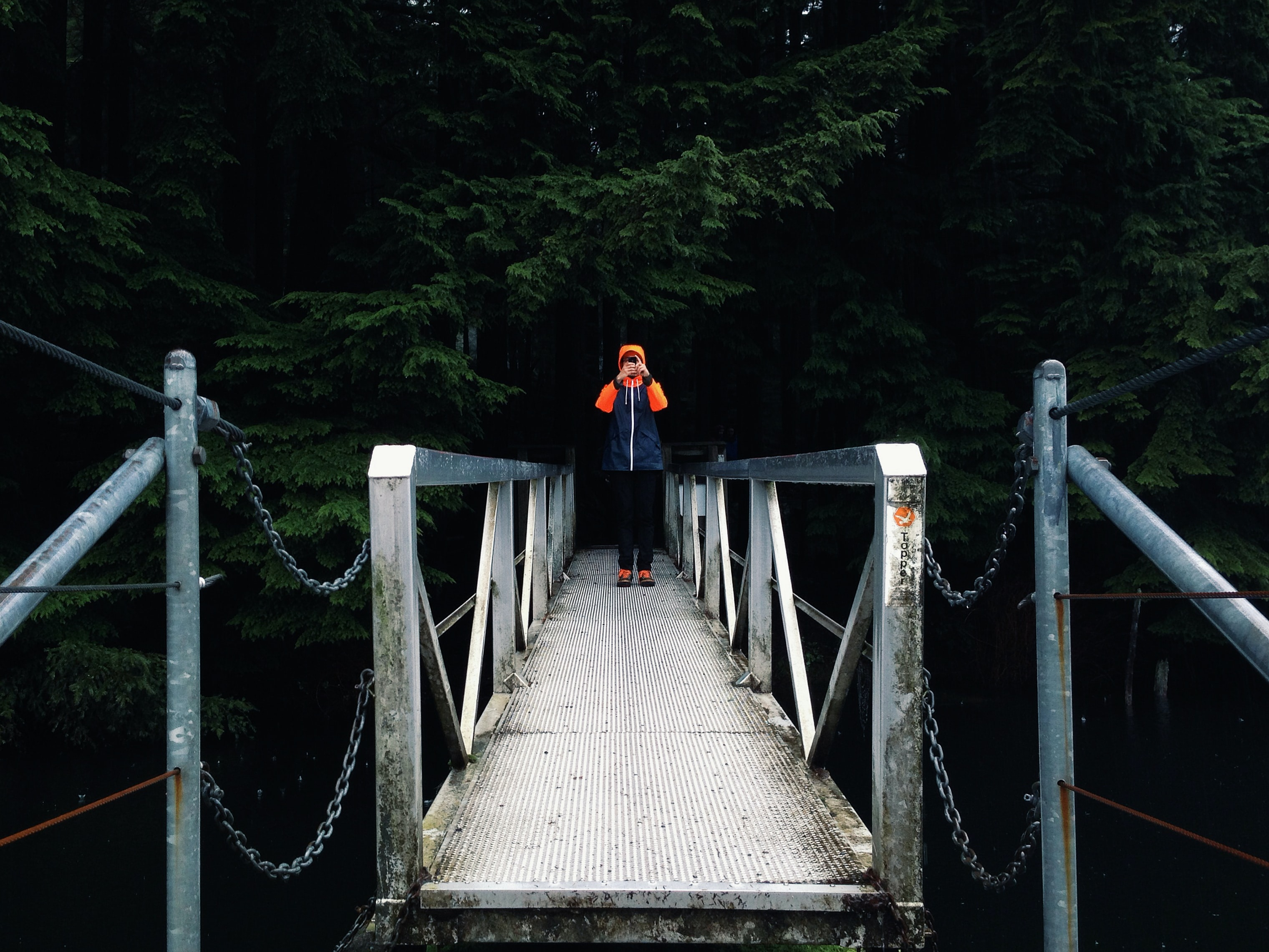 A man on a bridge leading into a forest taking a photo with his phone