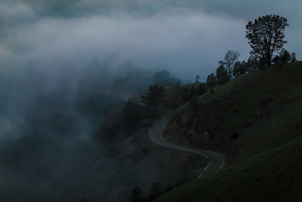 concrete road on hill with trees covered in fogs