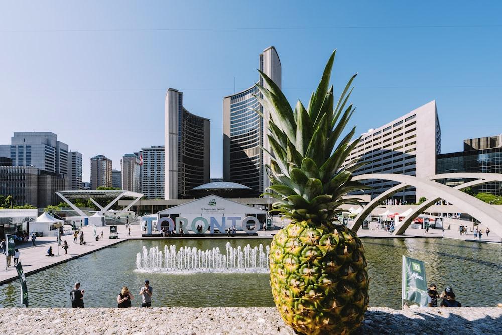 yellow pineapple near water fountain during daytime