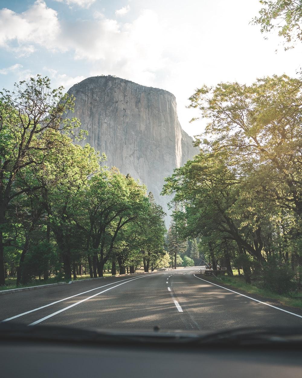 landscape photography of Devil's Tower
