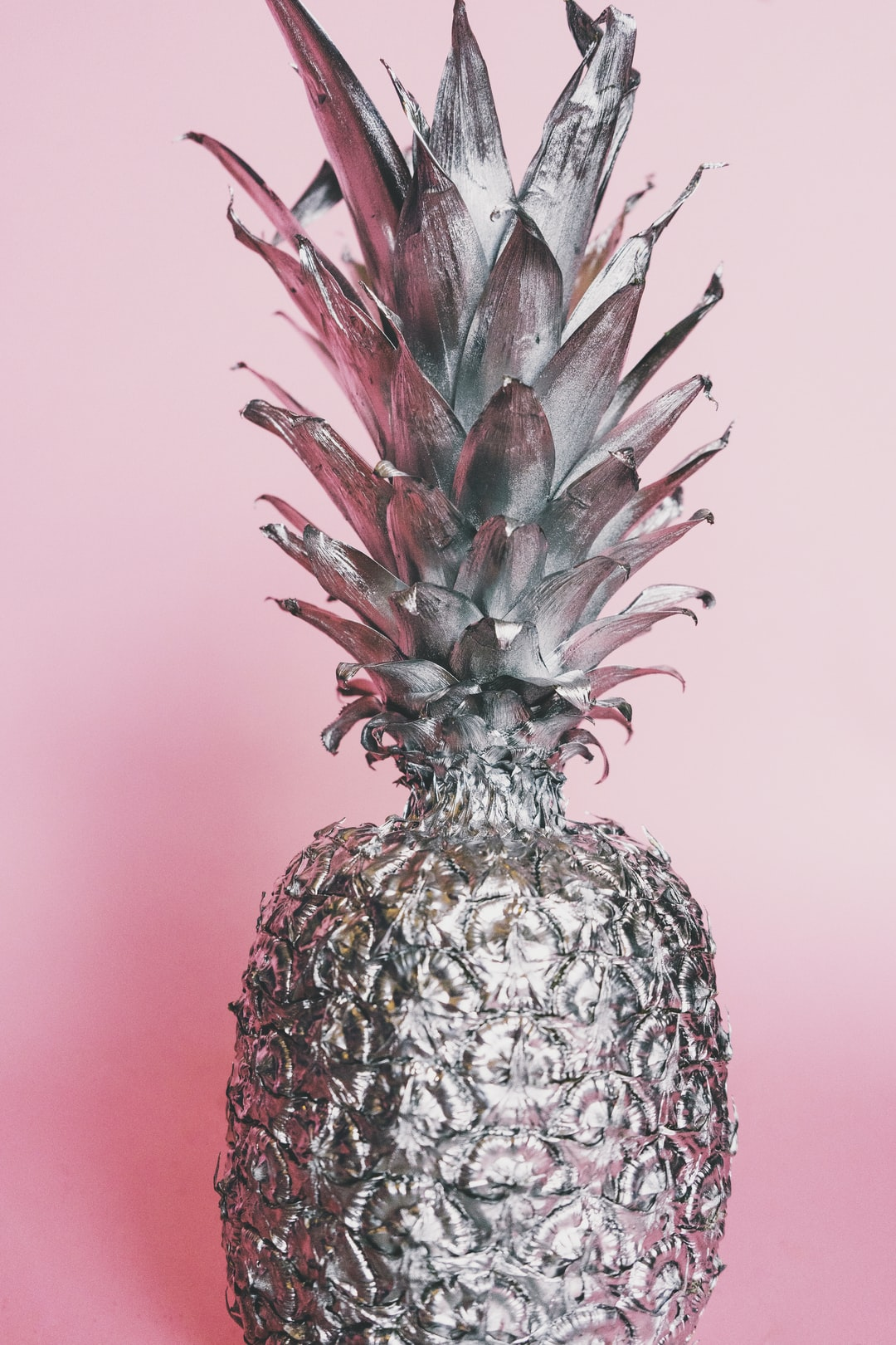 free image of silver pineapple
