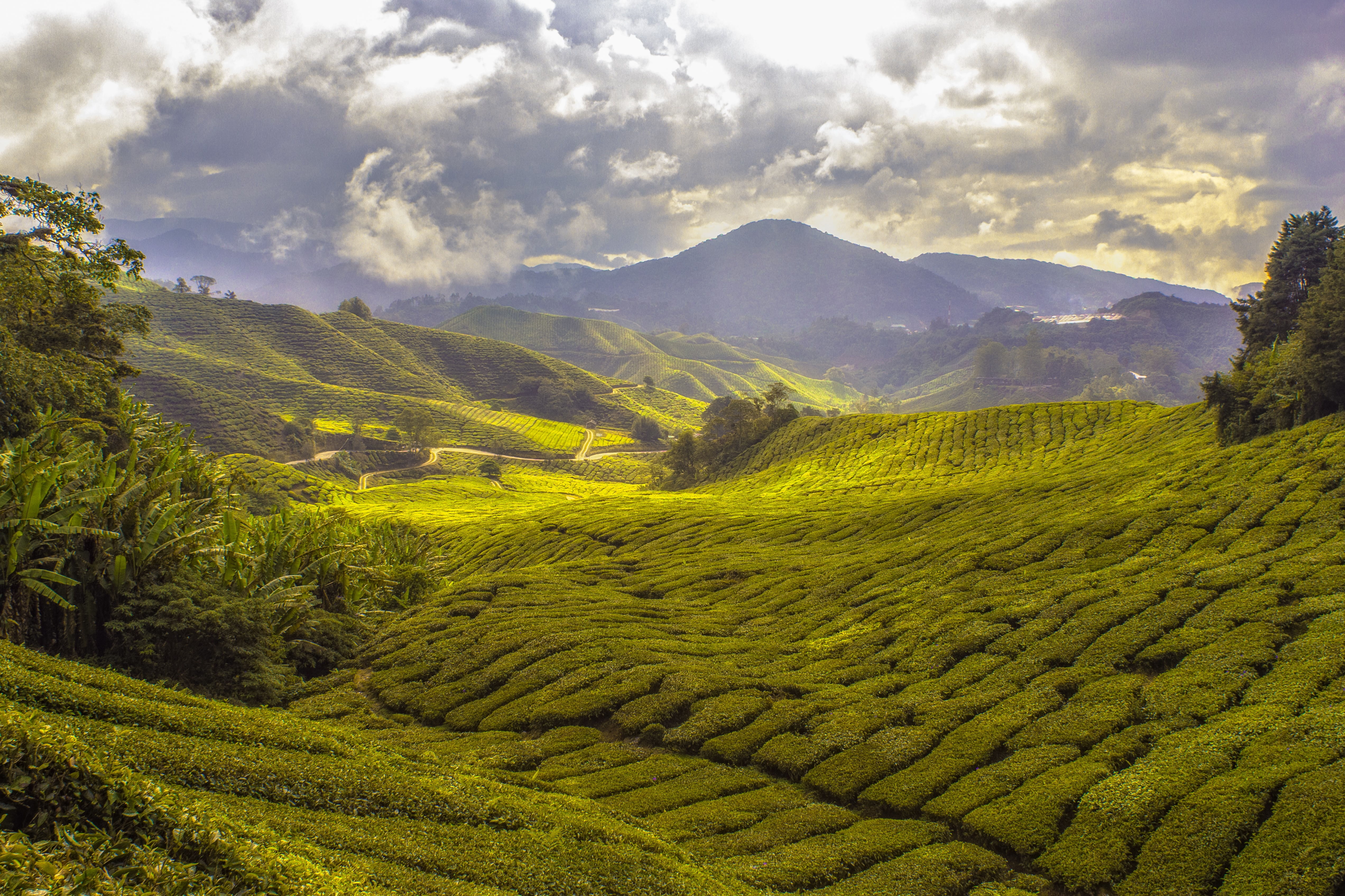 landscape photography of mountain