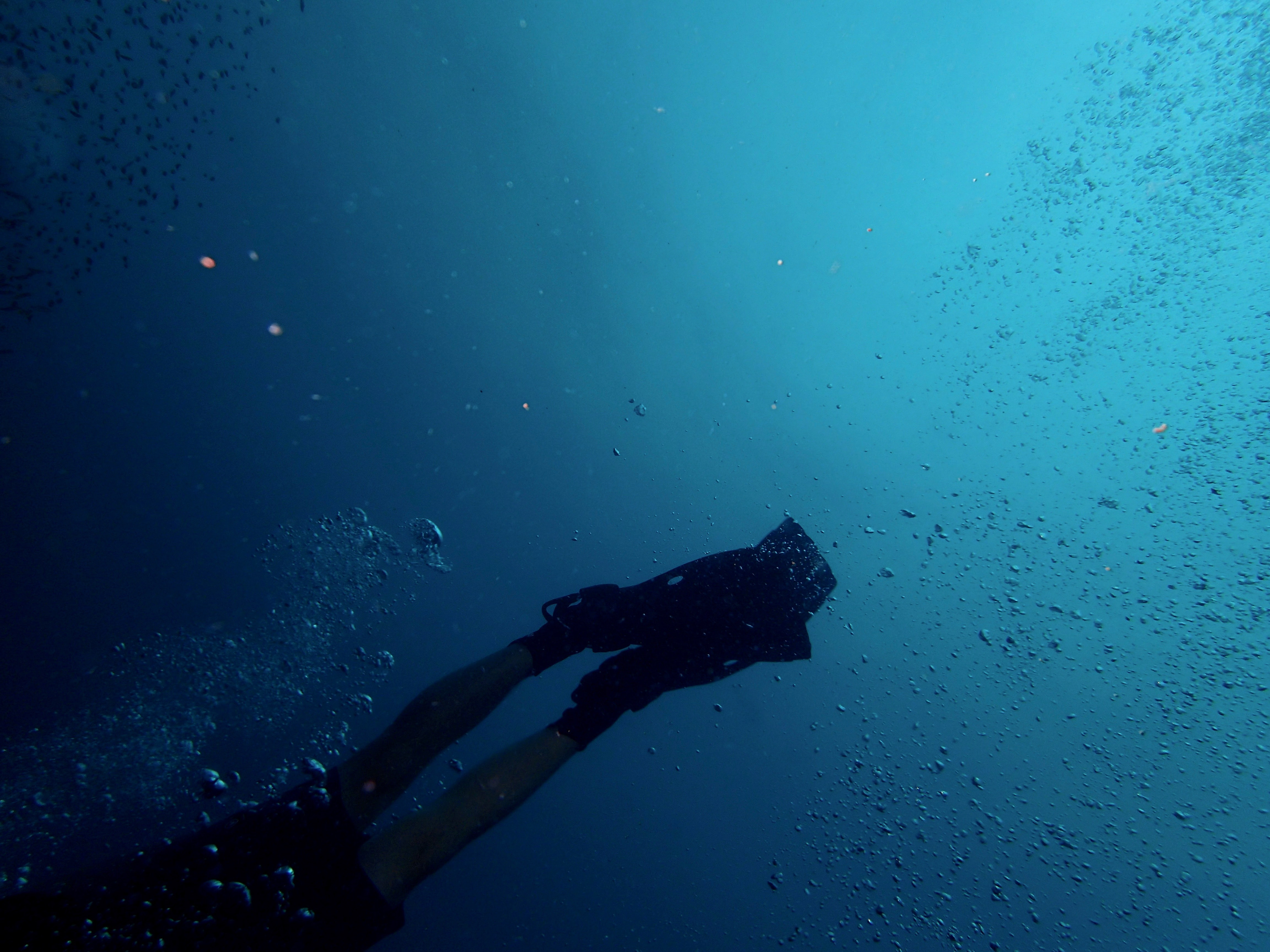 Underwater view of air bubbles and diver`s legs while diving at Panama City Beach