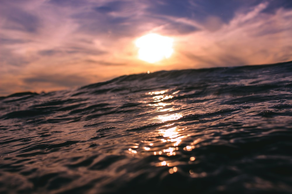 body of water with sun