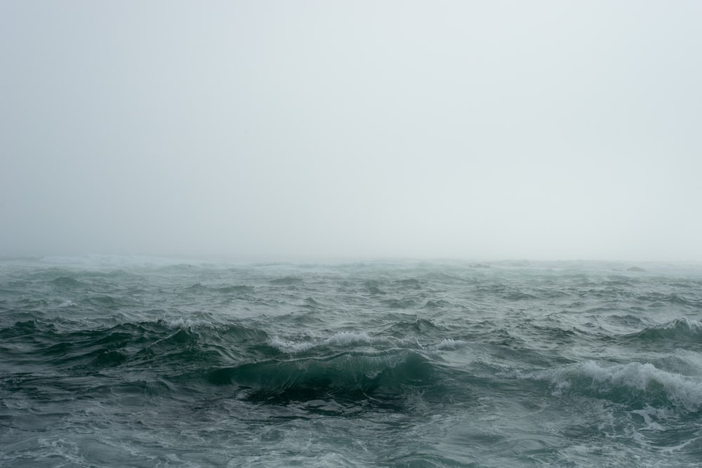 body of water surrounded by fog