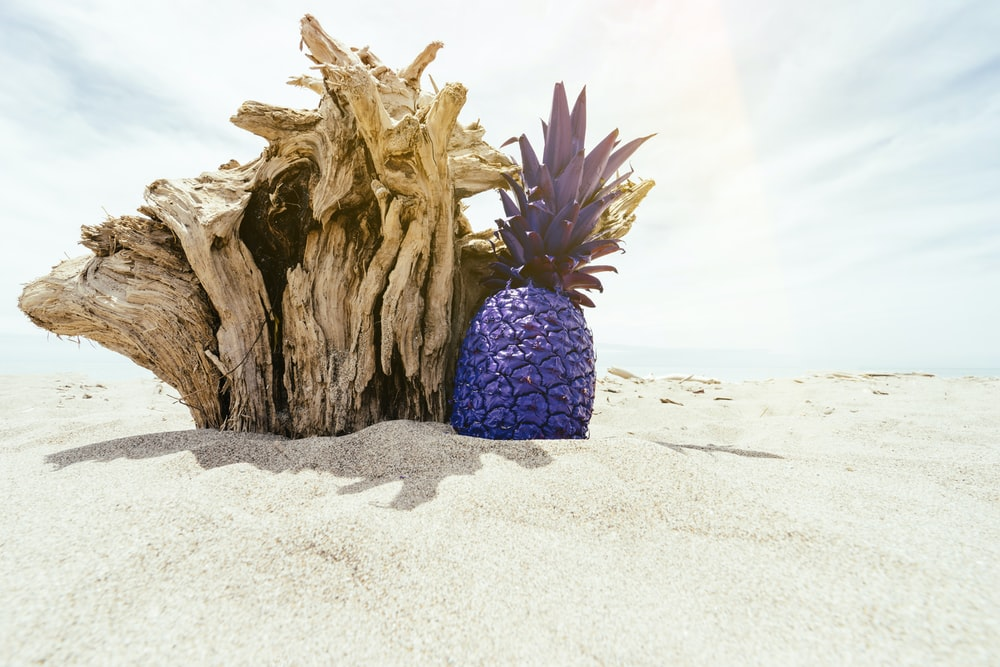 purple pineapple beside brown woodcraft on sand during daytime