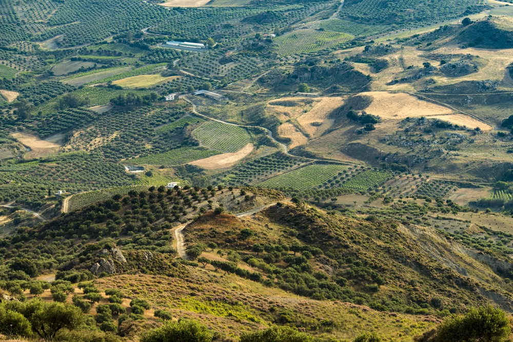 aerial photography of green field and mountain