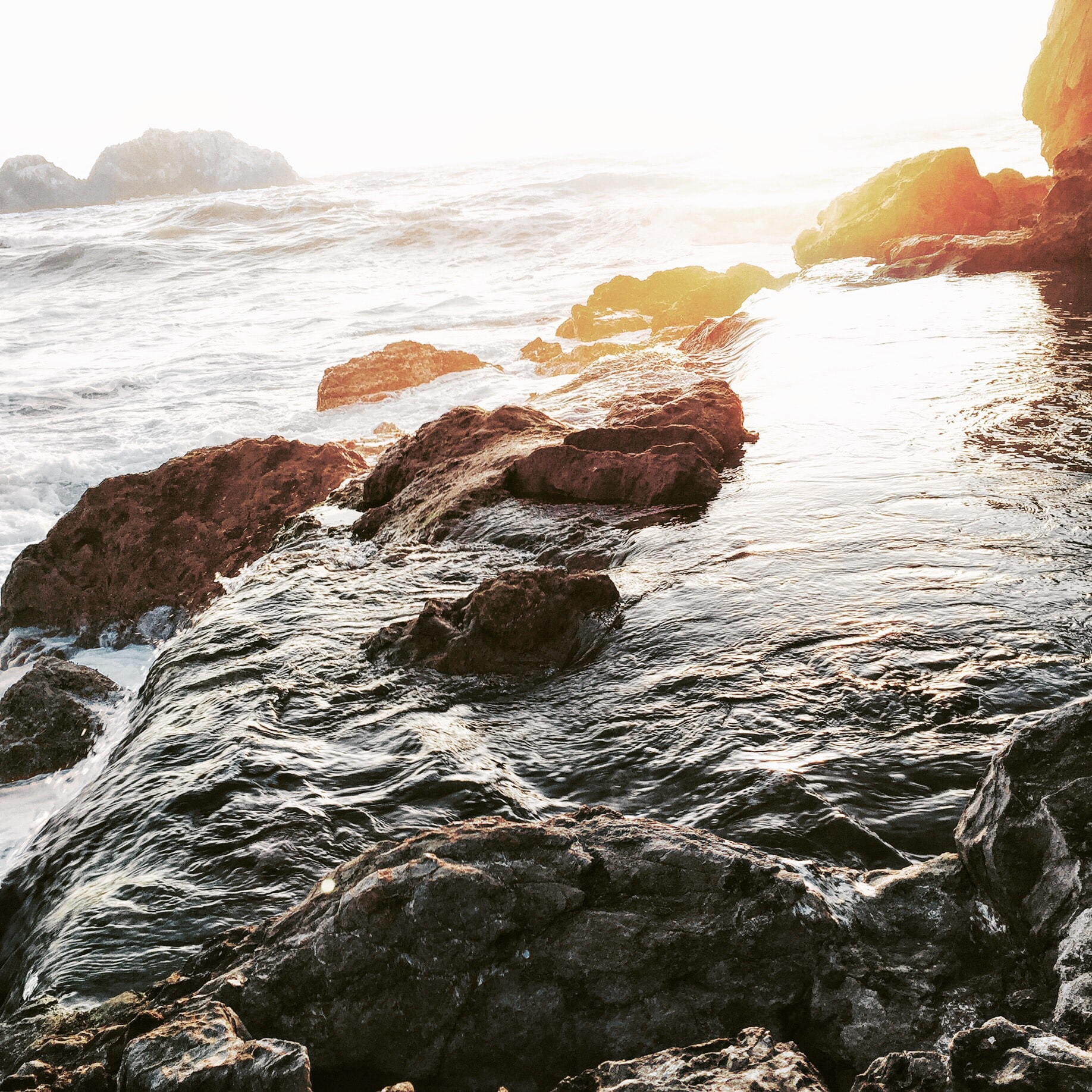 Free Unsplash photo from Esther Cuan