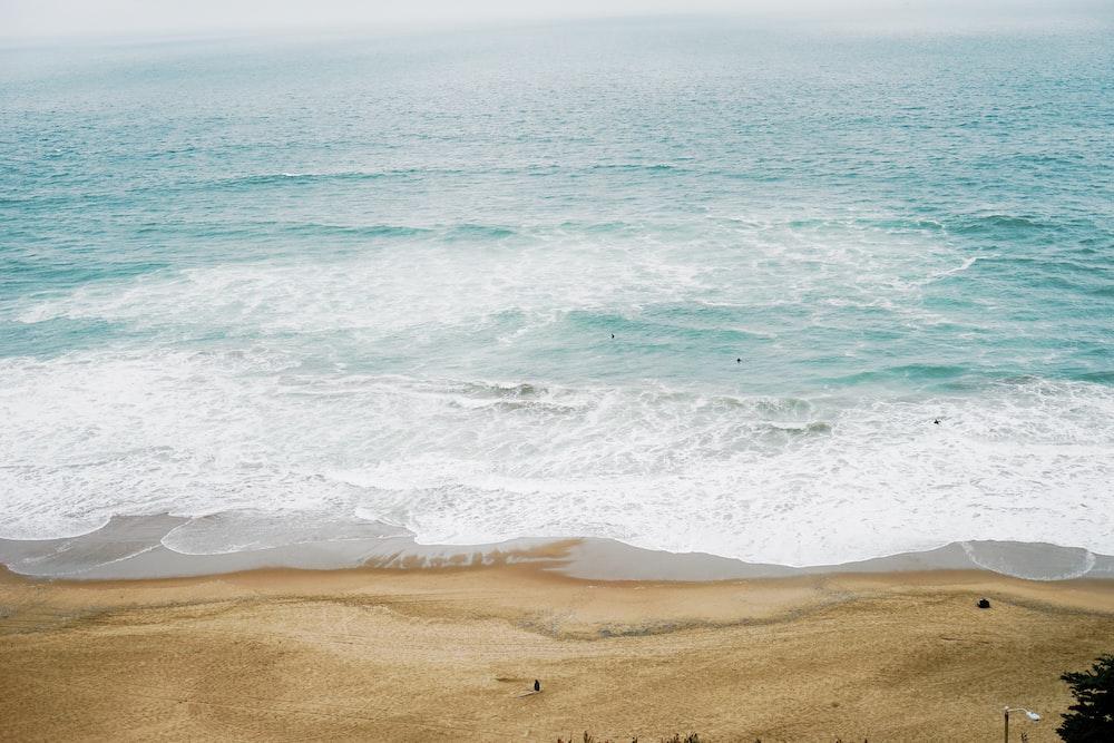 calm ocean at daytime