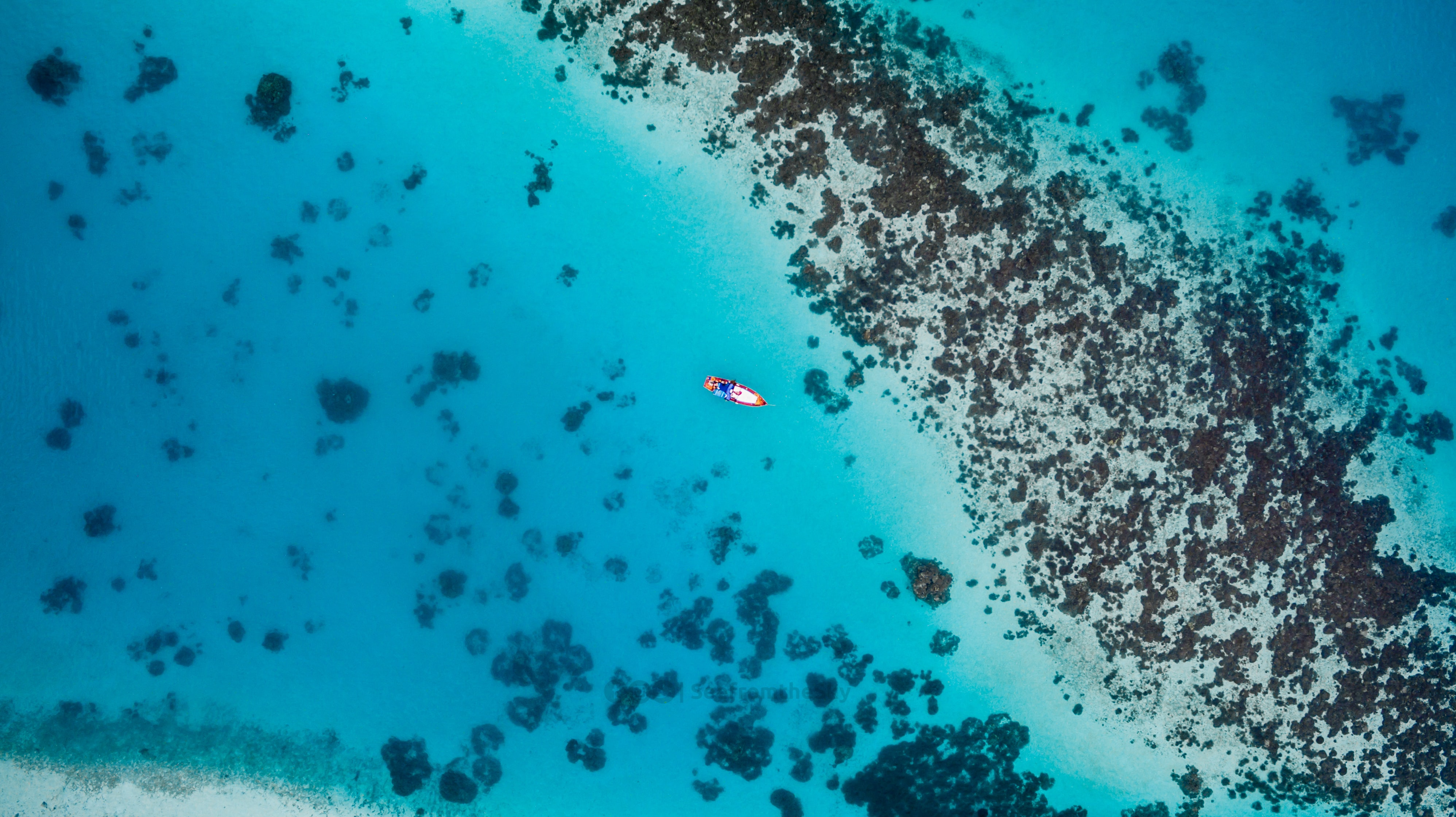 An aerial drone shot of a boat in the sea at Maaenboodhoo, Central Province, Maldives, with the coral reef visible below the turquoise water