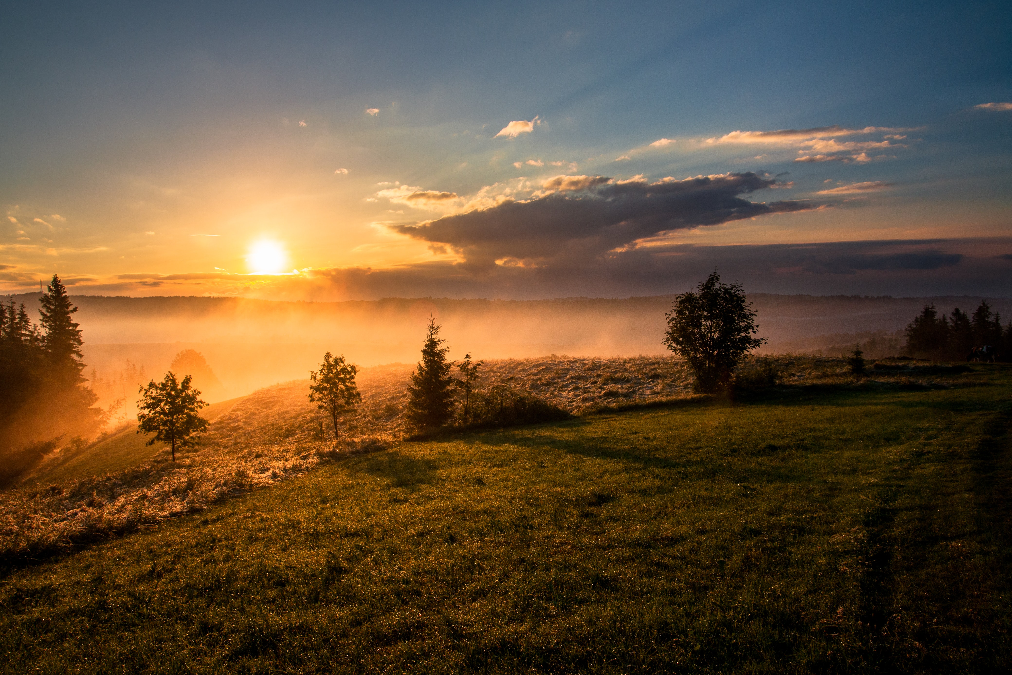 Sun peaks over the horizon as mist covers rolling hills