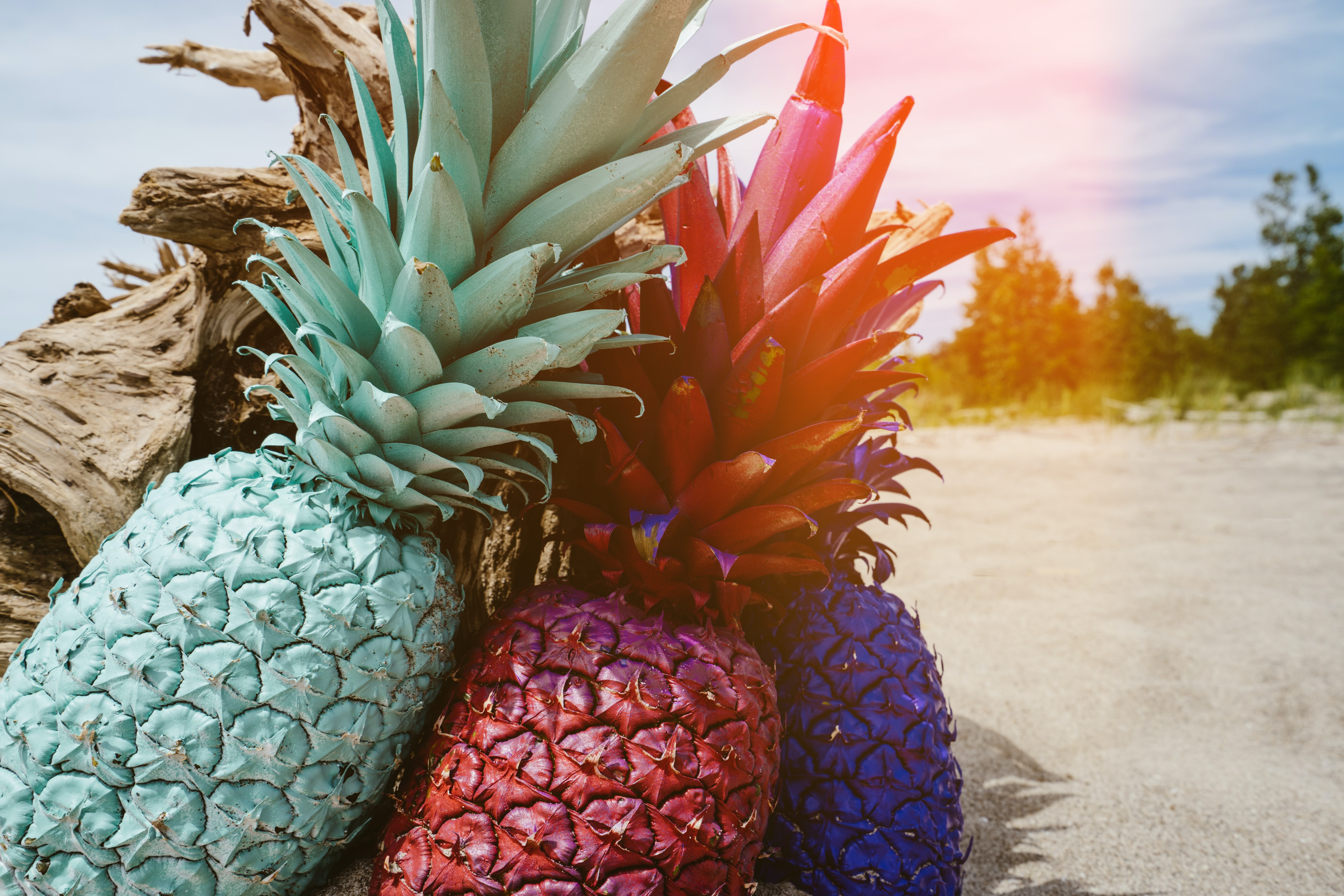 Multicolored pineapples leaning against each other on the beach.