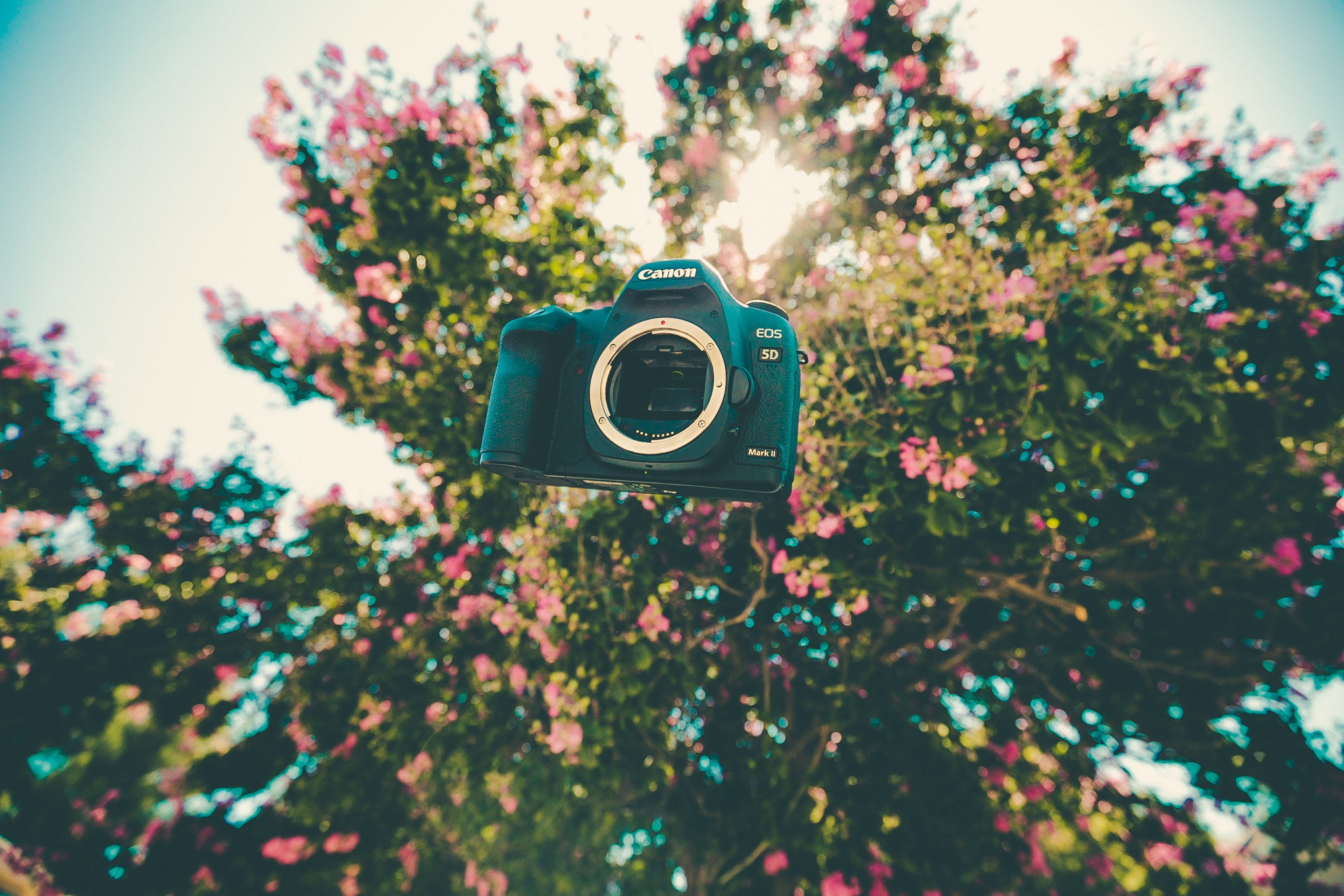 black Canon EOS on mid air near trees during daytime