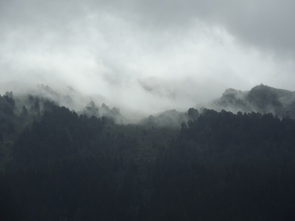 silhouette of mountain covered by fogs
