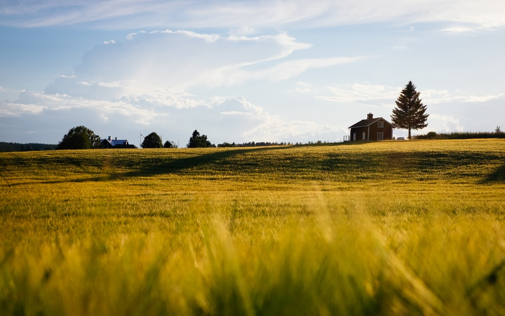 green grass field with house during daytime