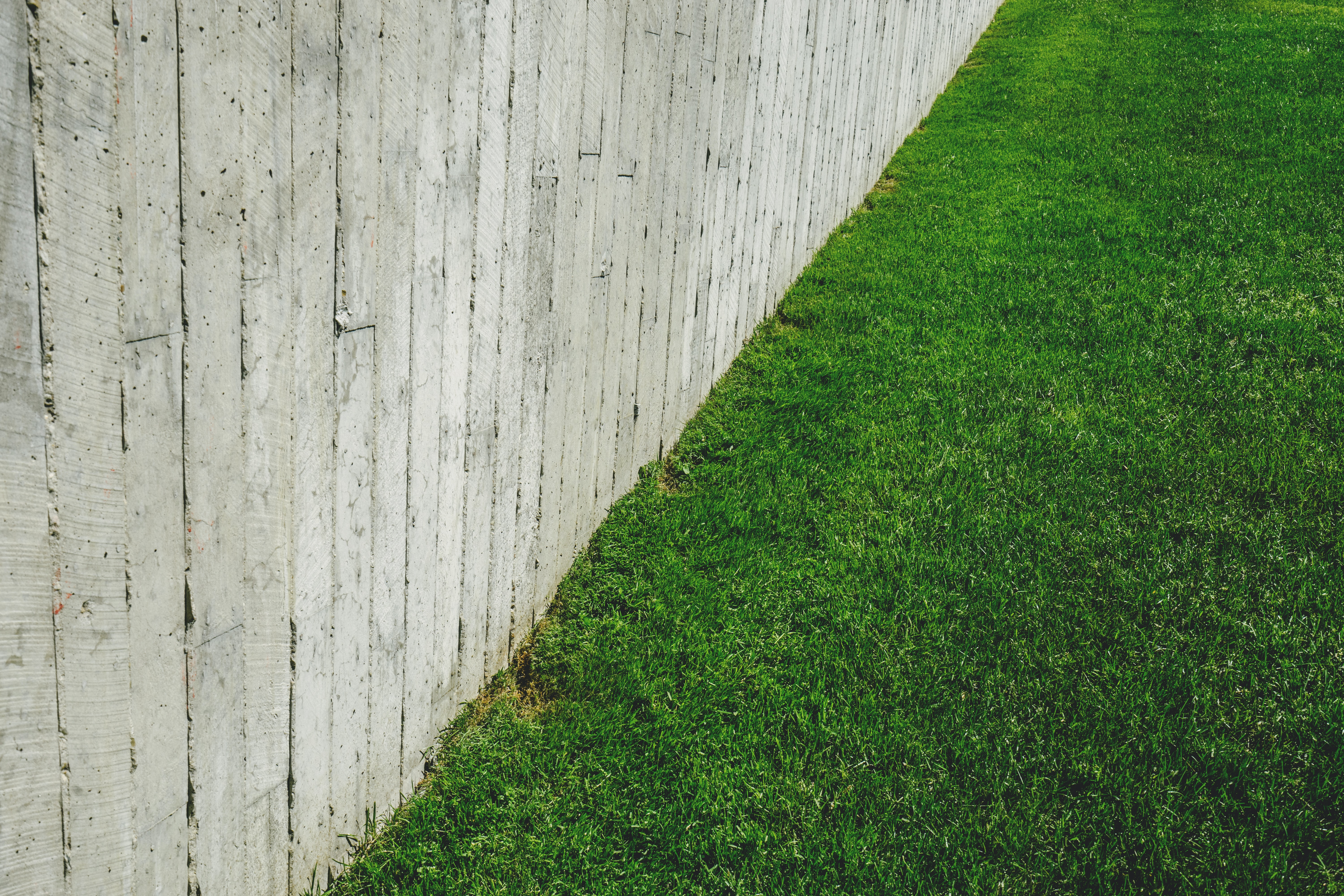 A fence and green grass