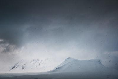 1197. Ködös tájakon