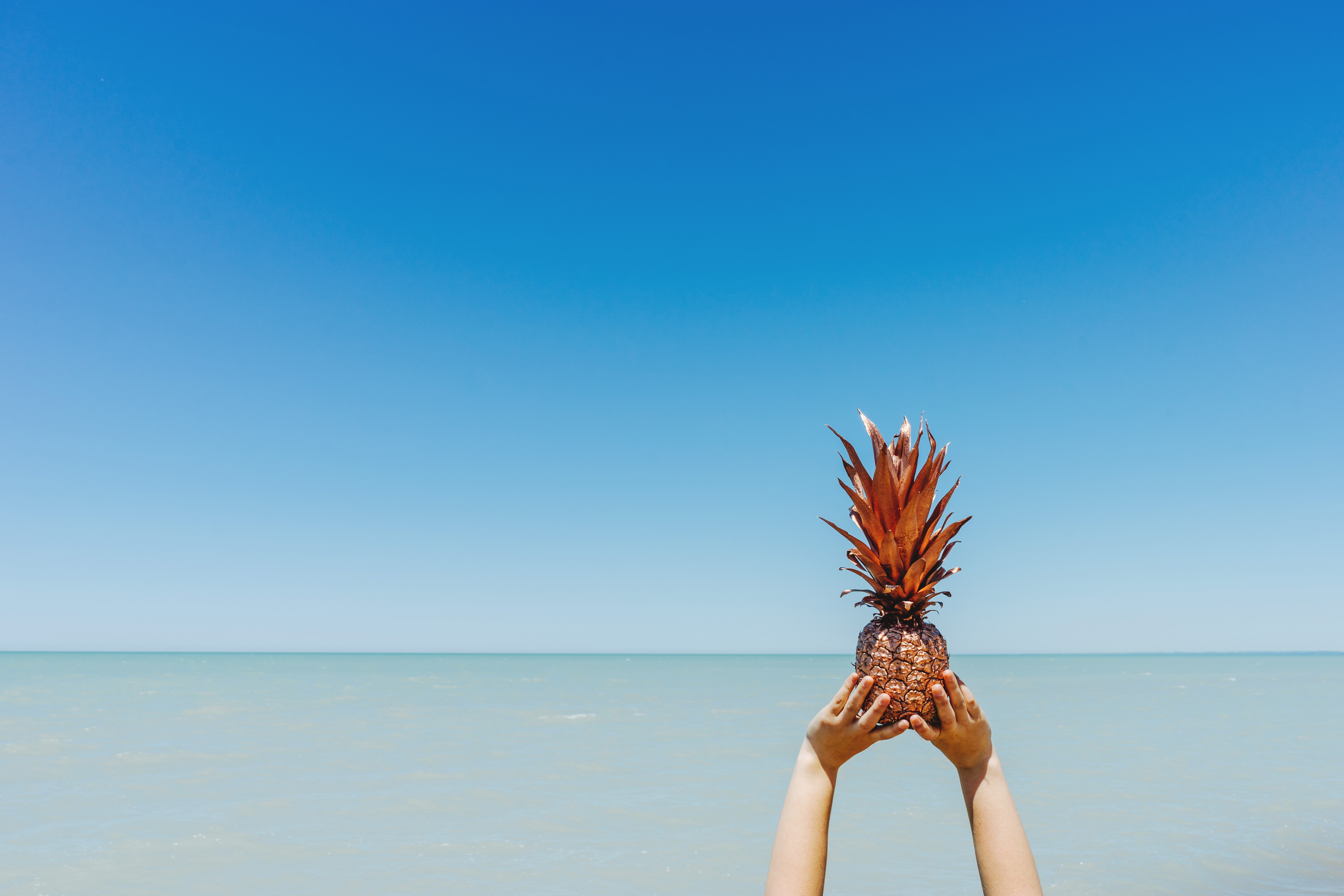 A person holding up a gold-painted pineapple against the vast sea stretching to the horizon