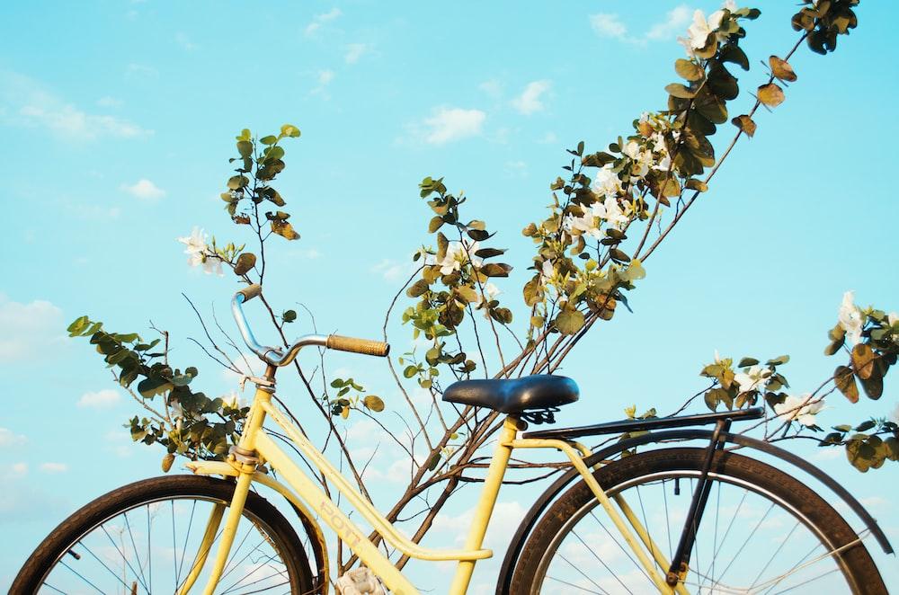 shallow focus photo of yellow city bike
