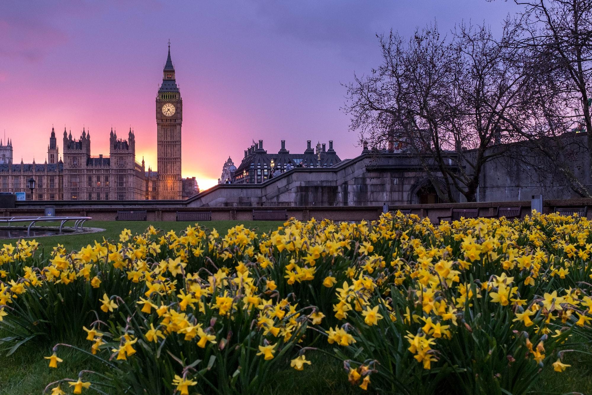 UK Government Communication/Social Orchestration Platform