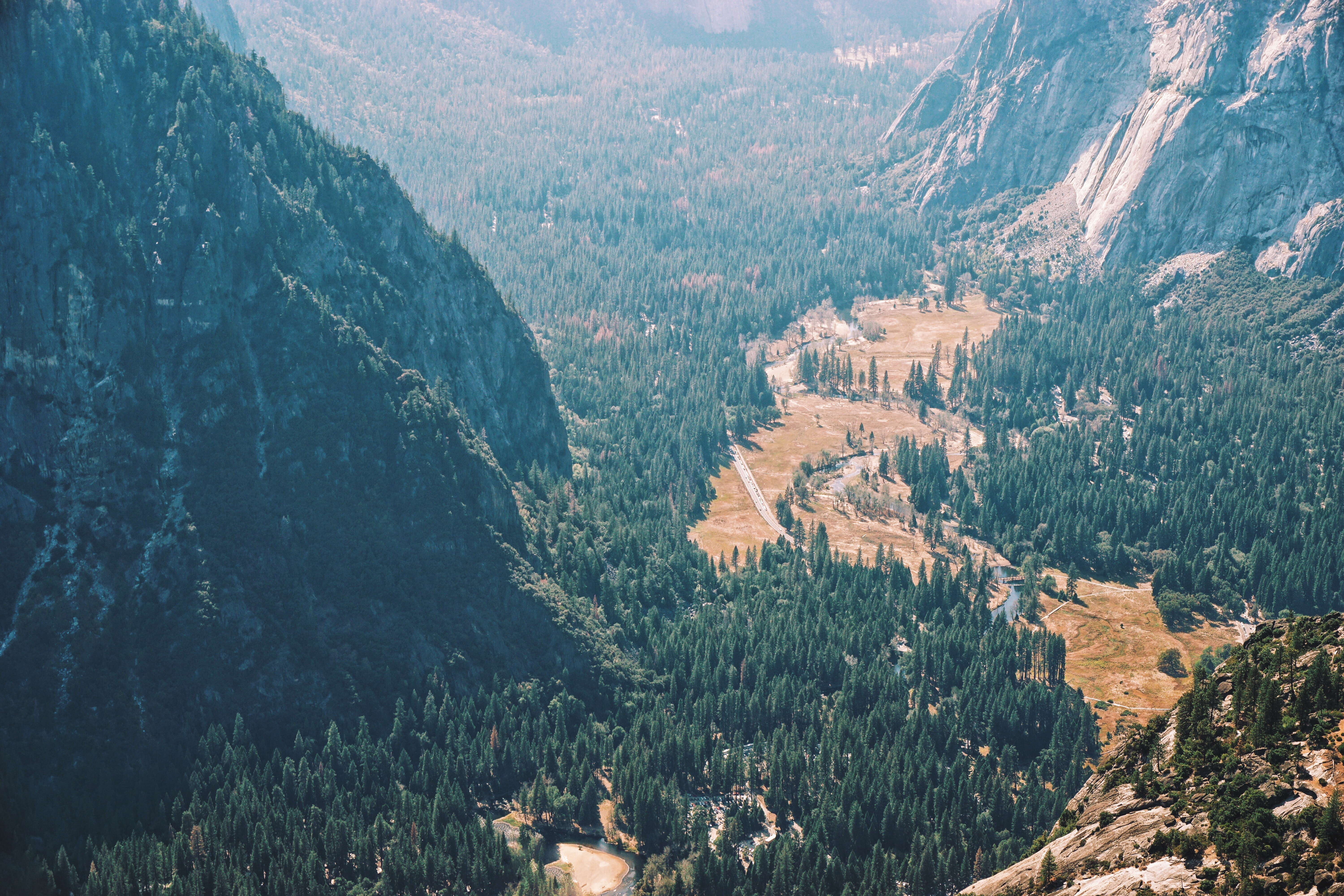Mountain landscape in Yosemite with green forest trees and rocky hillsides