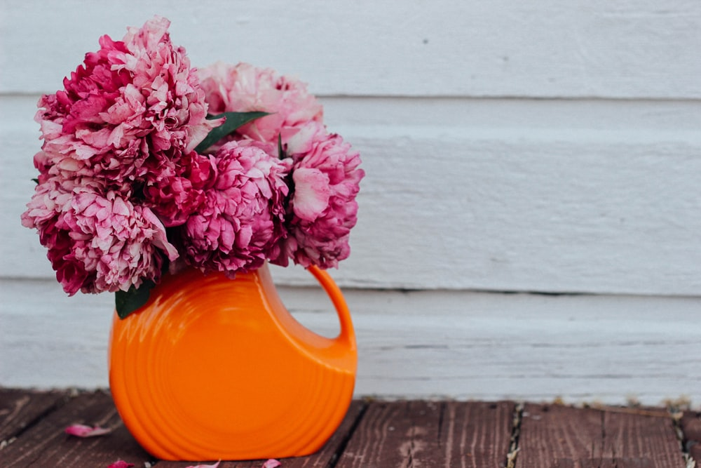 pink flowers on orange ceramic vase