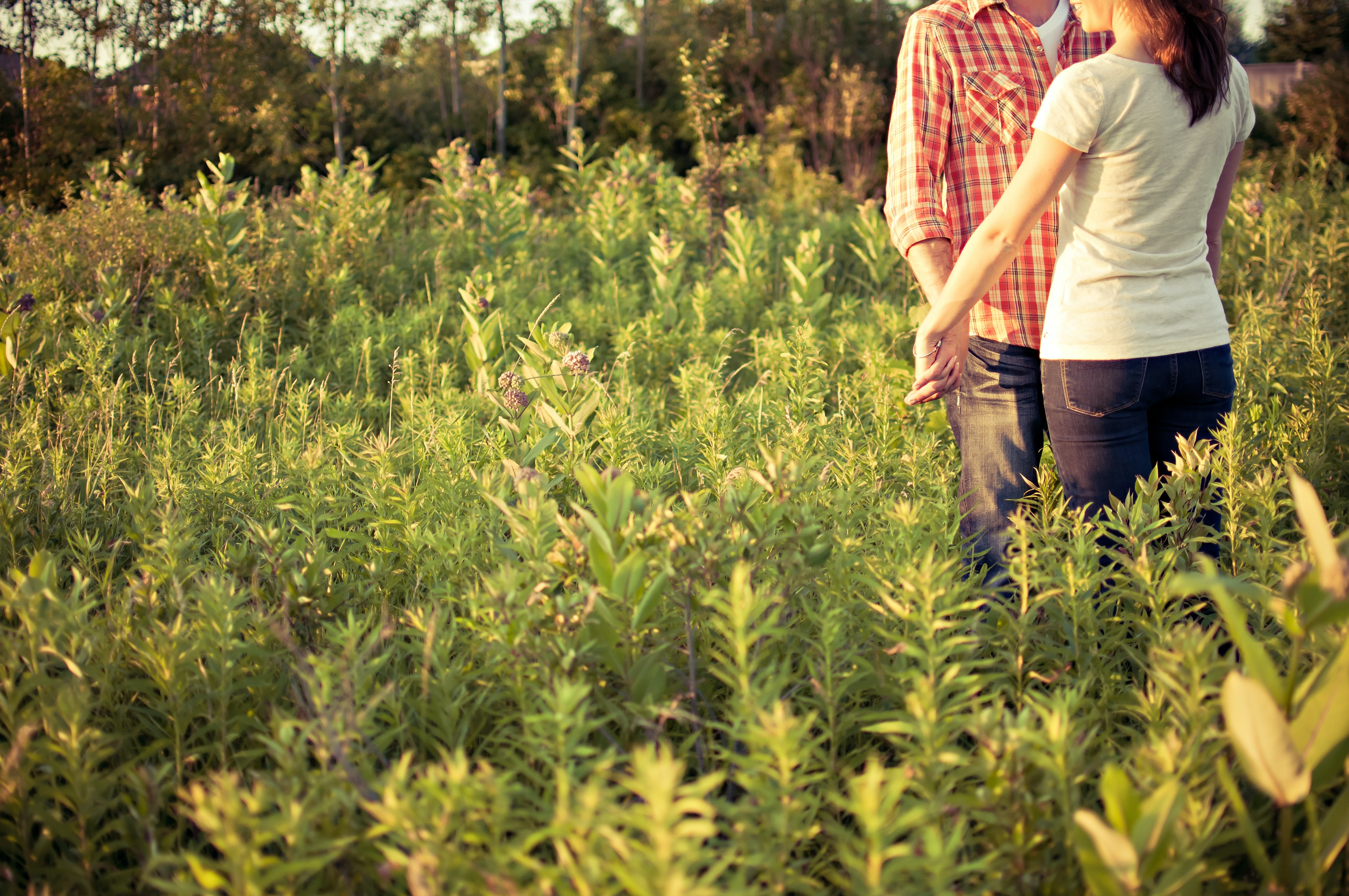 Couple together in a field of wild plants in soft sunlight