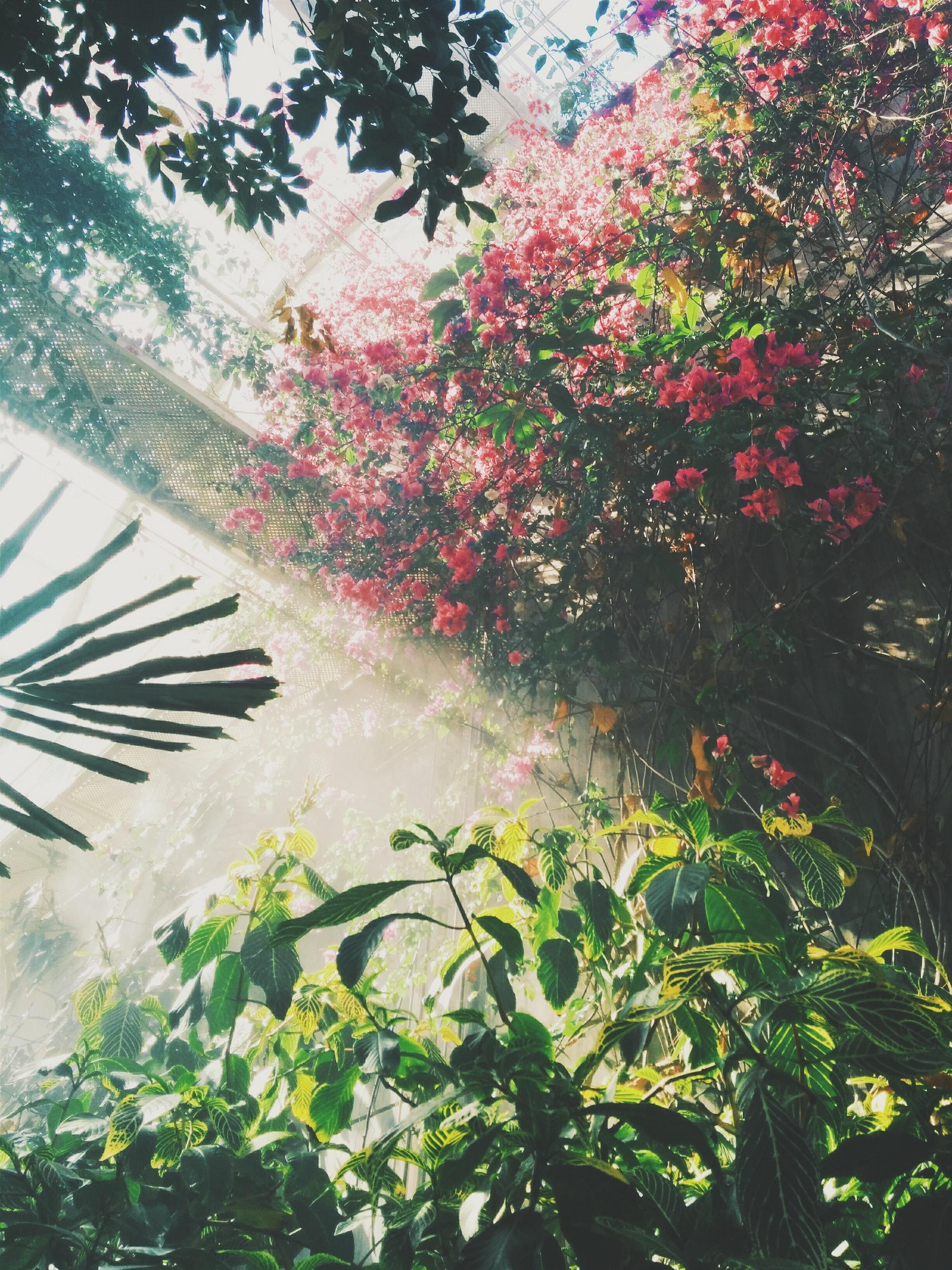 Doprajte si wellness a dovolenku priamo na záhrade