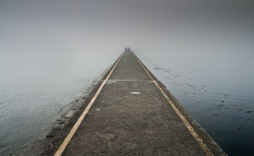 photo of boardwalk between body of water