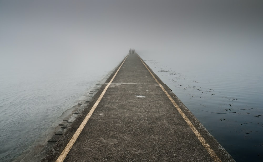 photo of boardwalk between body of water