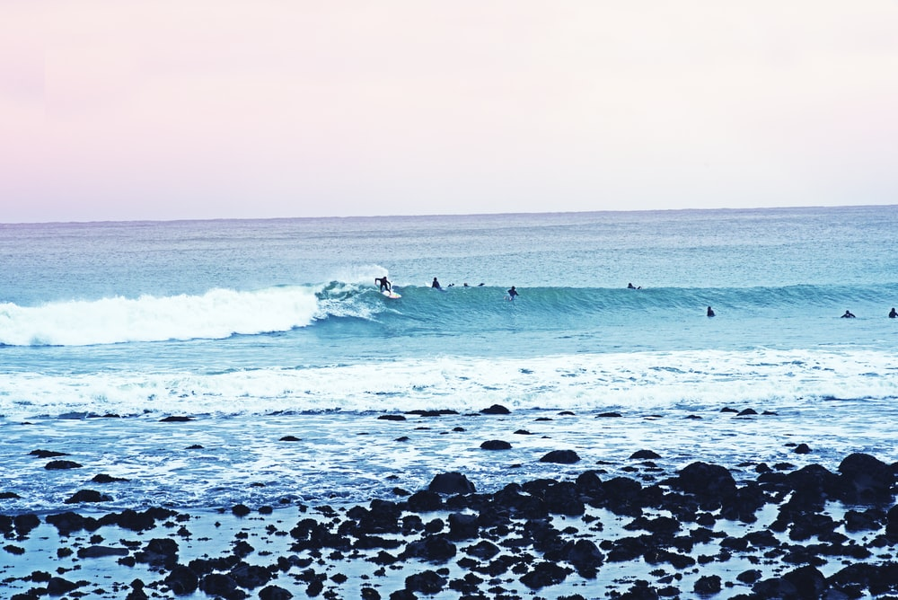 people surfboarding during daytime