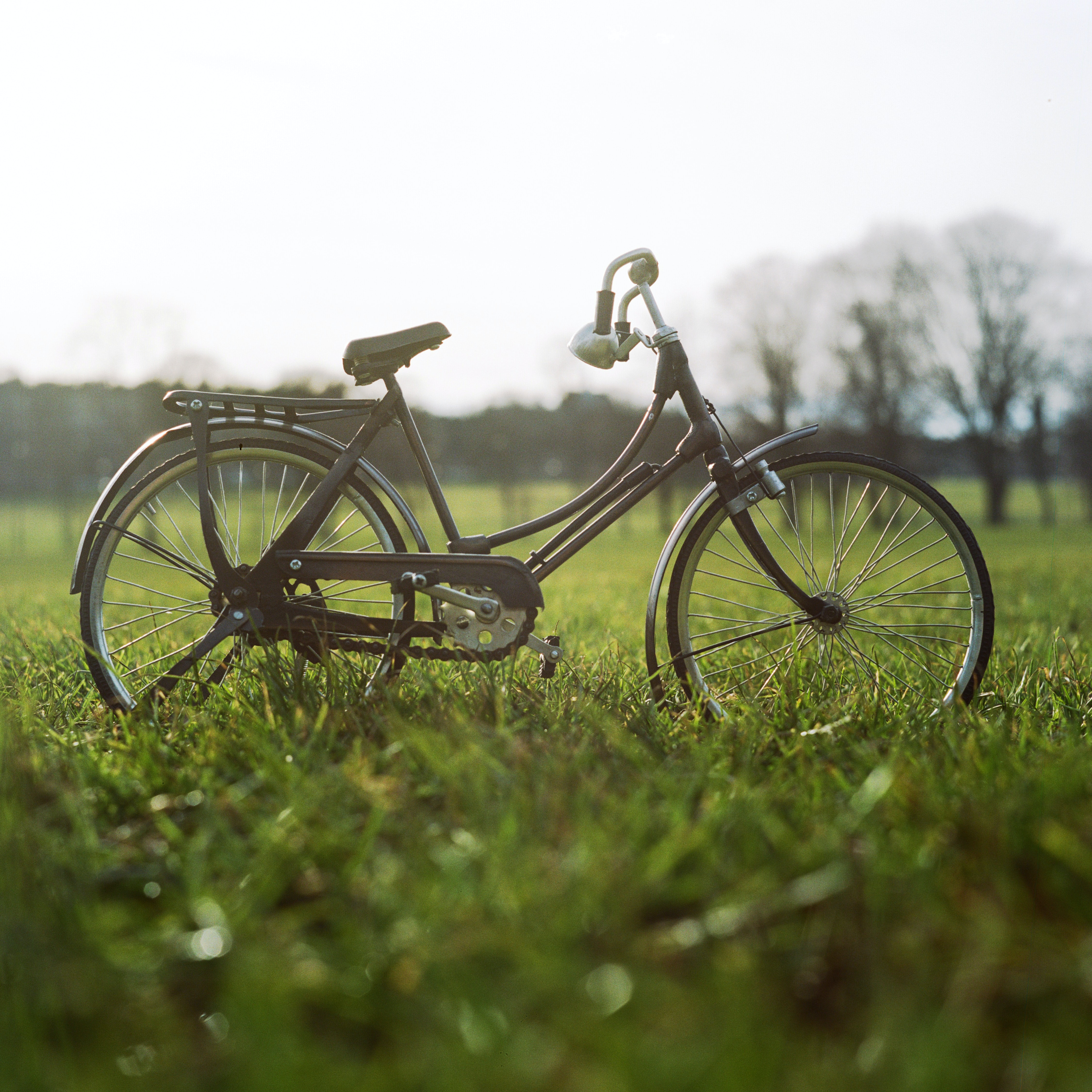 A black bicycle on grass in The Meadows