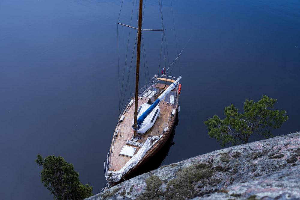 boat on body of water near tree
