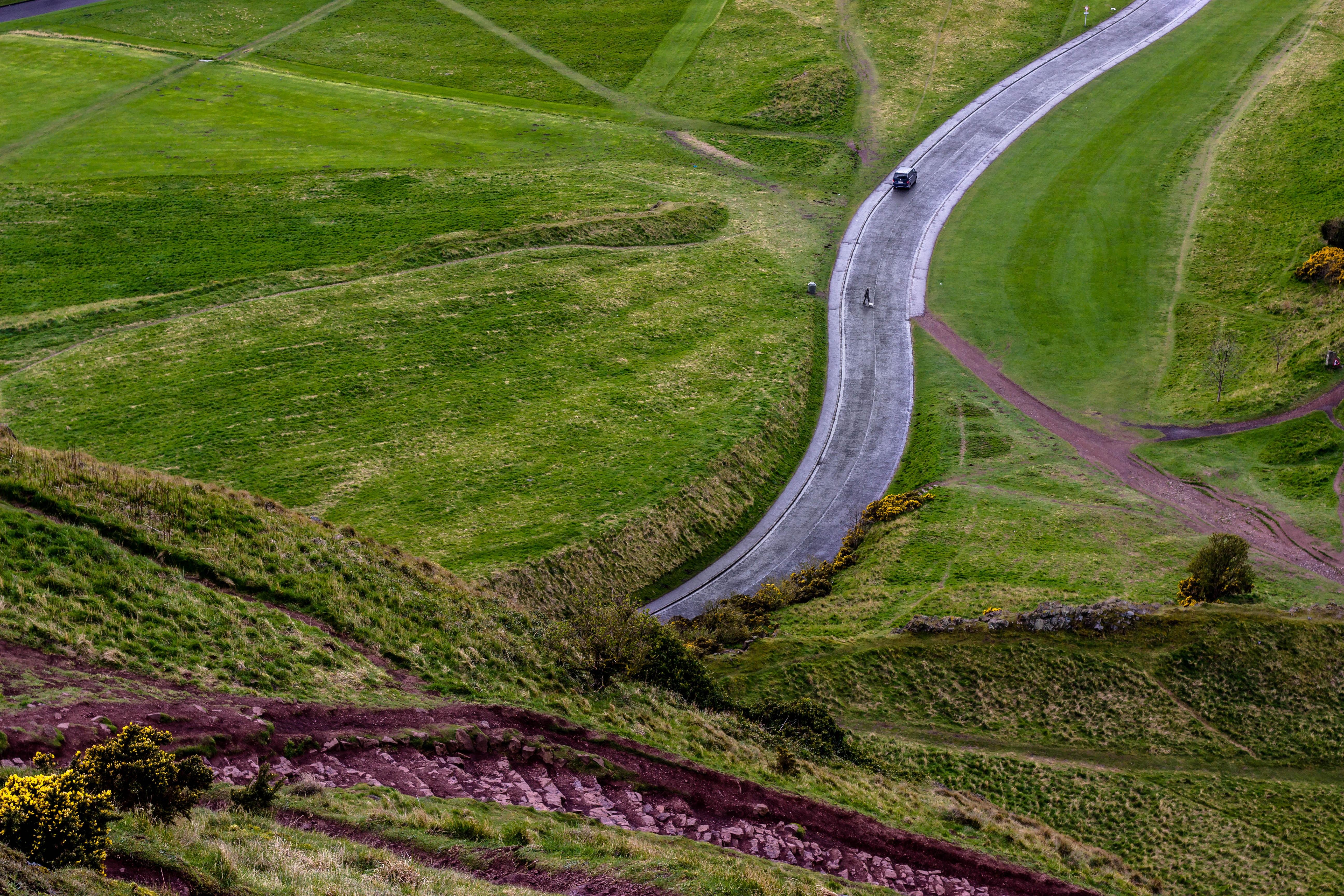 winding road near green grass field