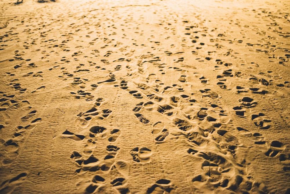 footprints on desert