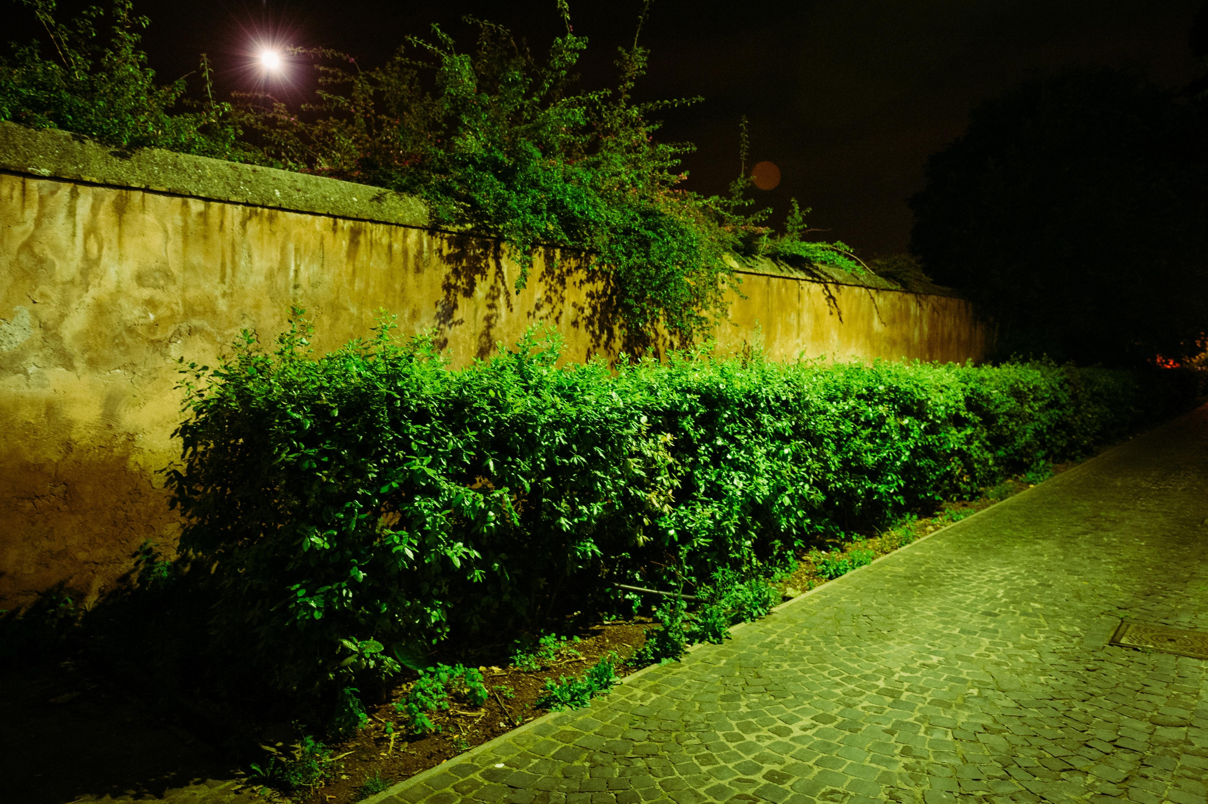 Free Unsplash photo from Ludwig Thalheimer