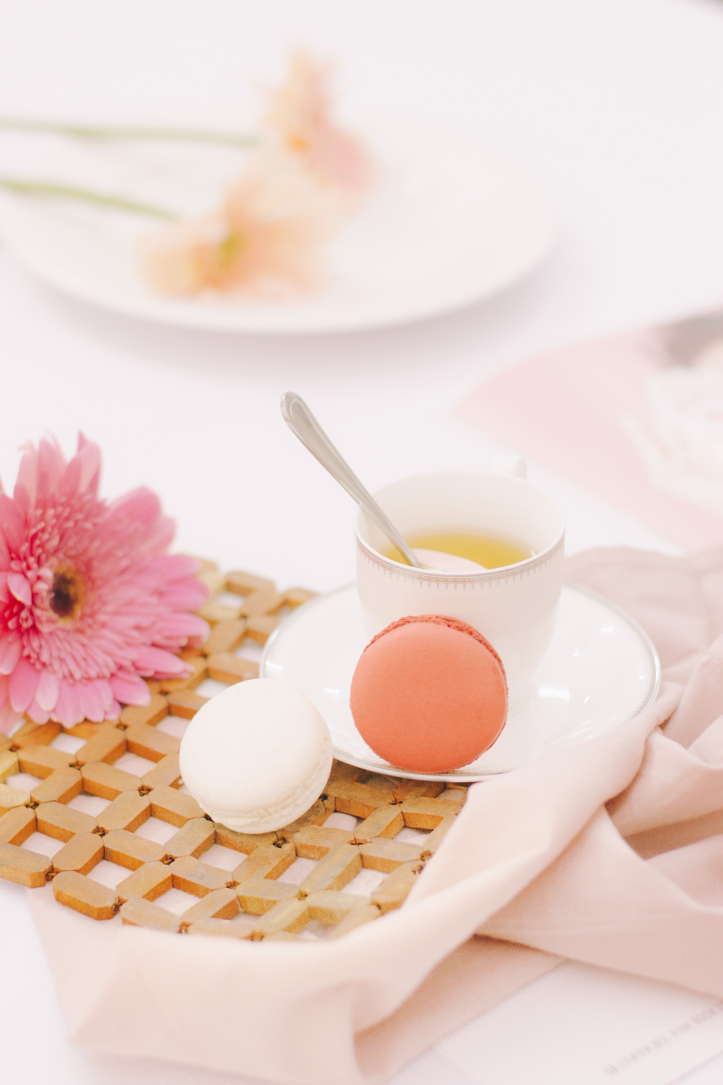 A pink gerbera flower next to a cup of tea and two macaroons