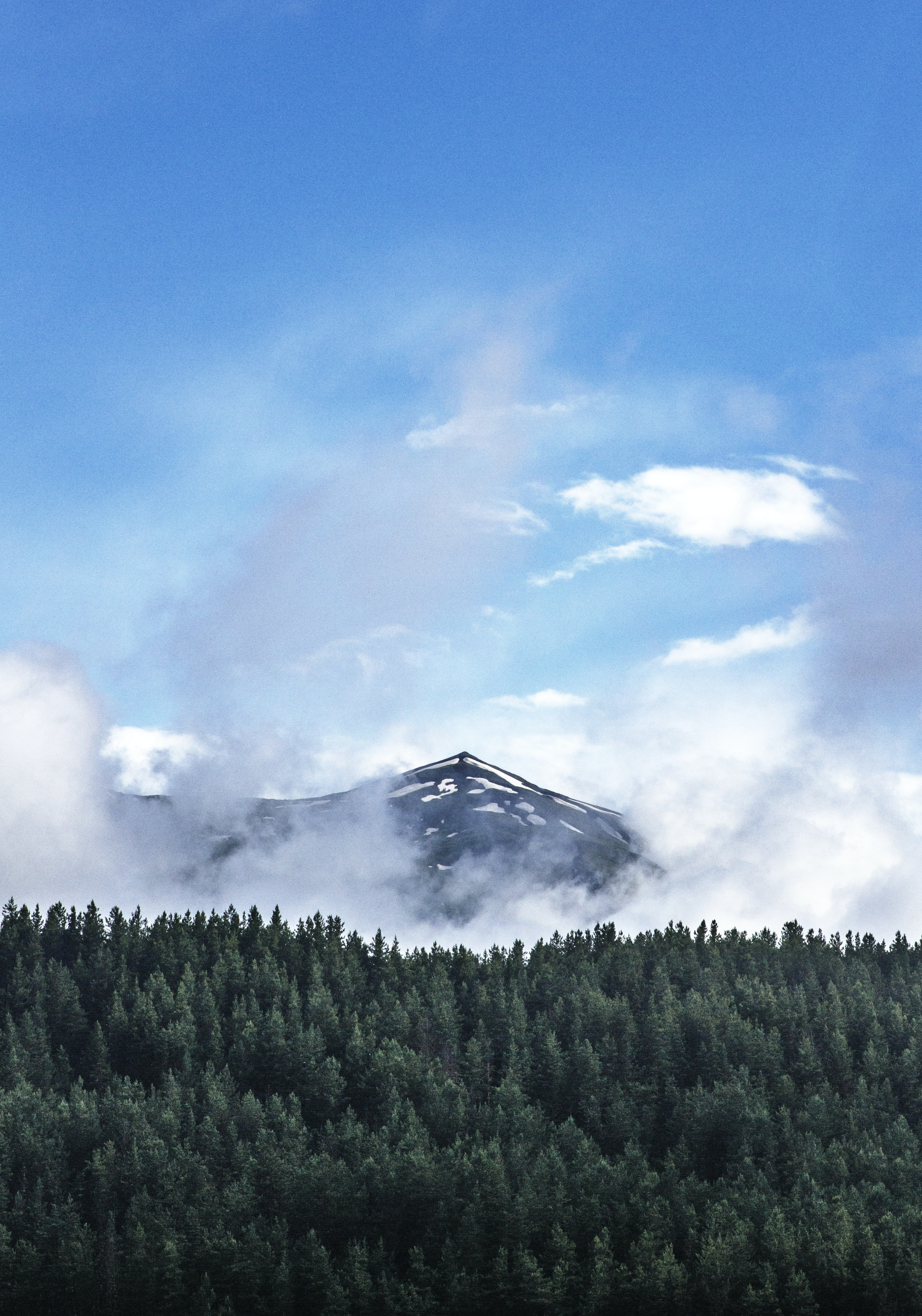Clouds rising up from a snowy mountain peak over a spruce forest in Tusheti Nature Reserve
