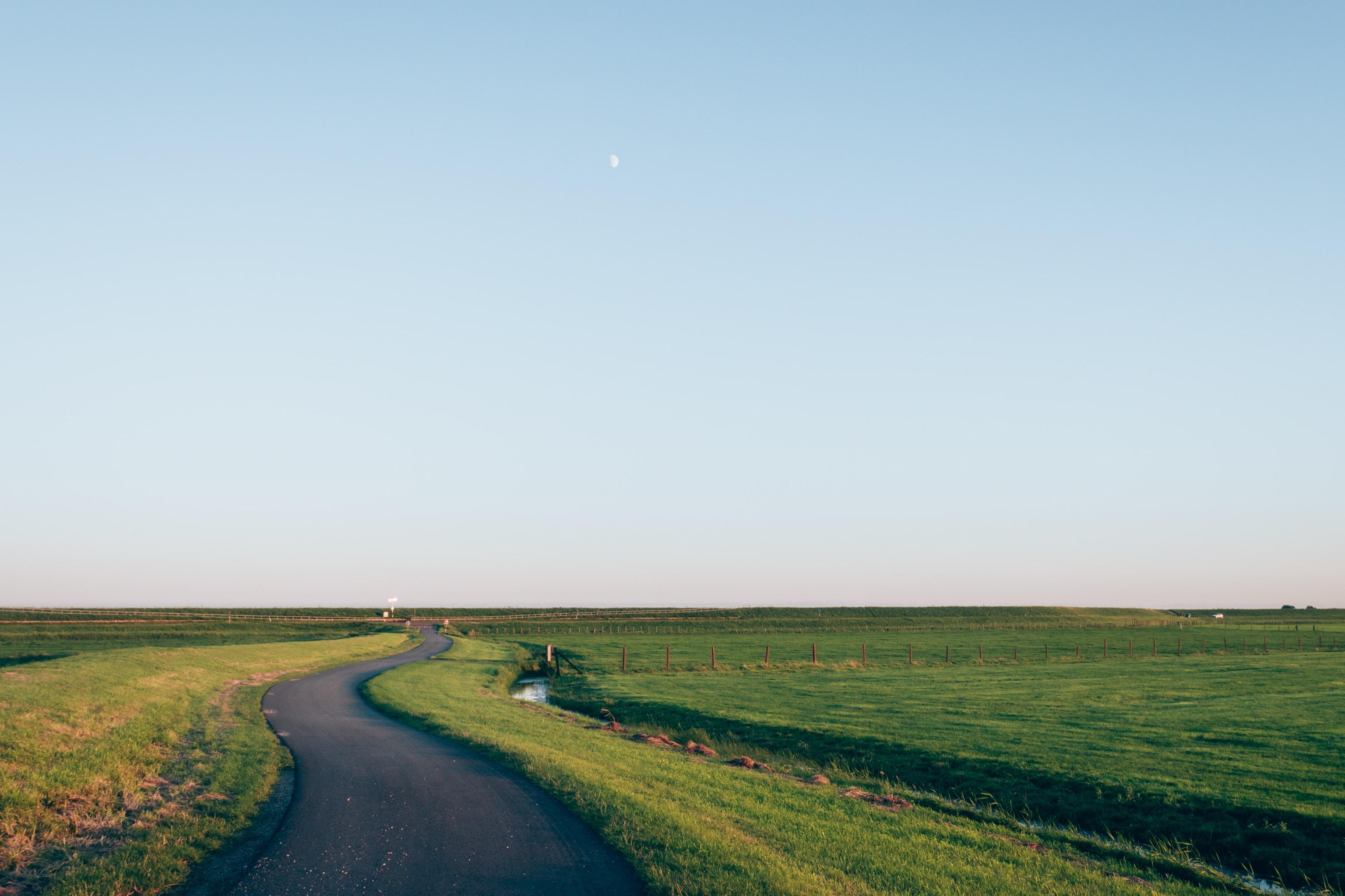 A winding road through a green meadow
