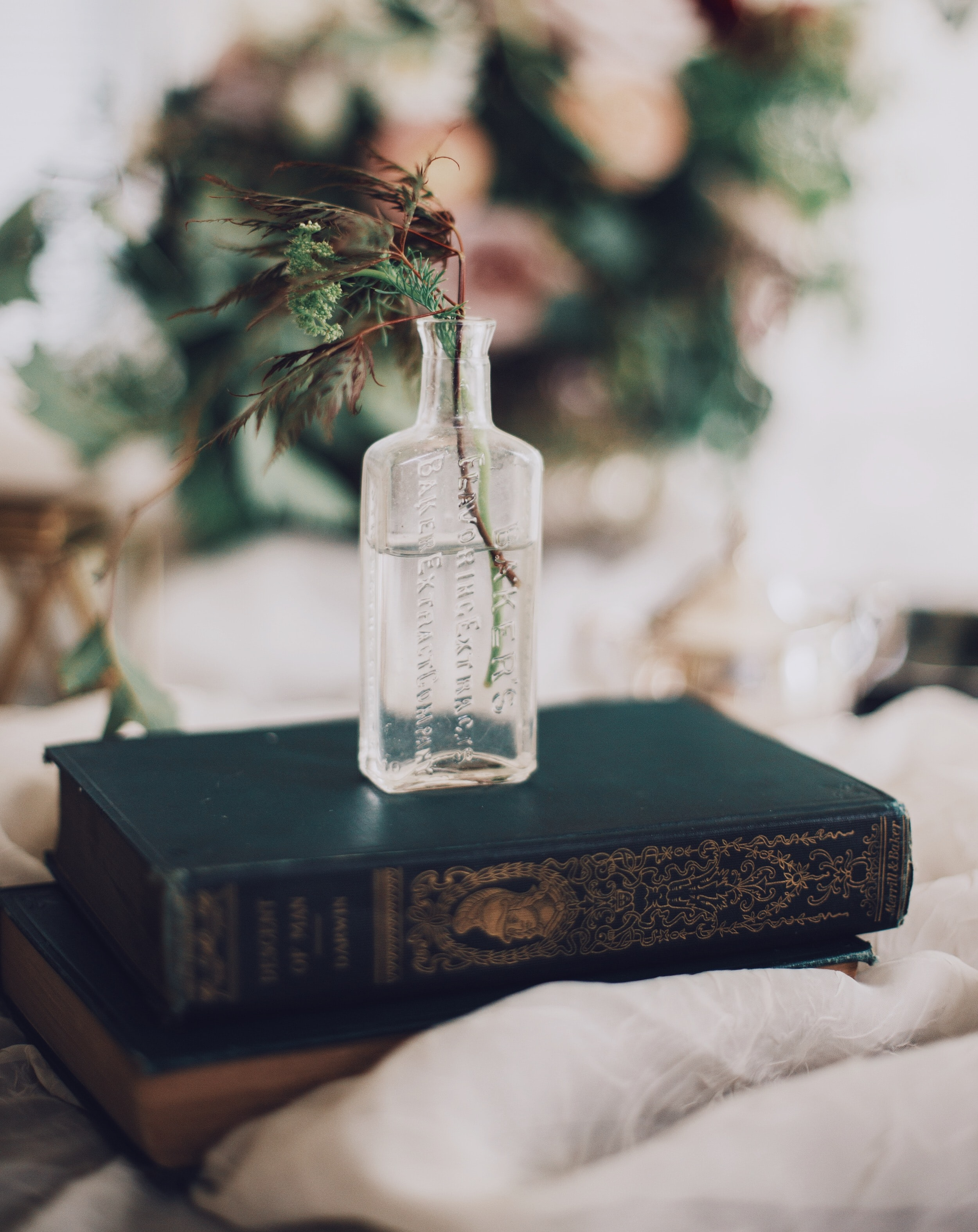 Blurry image of an old bottle holding a plant on top antique books with water inside it.